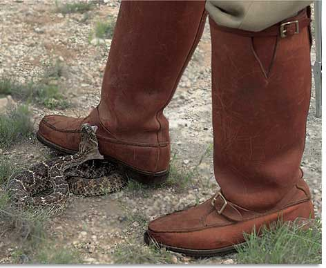 Snake Proof Boots for Hunting. Snakes
