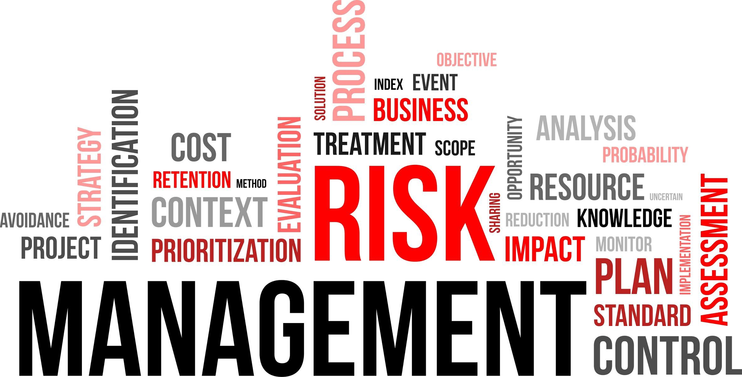 What Are The Main Types Of Risk Management? - Insurance Tips