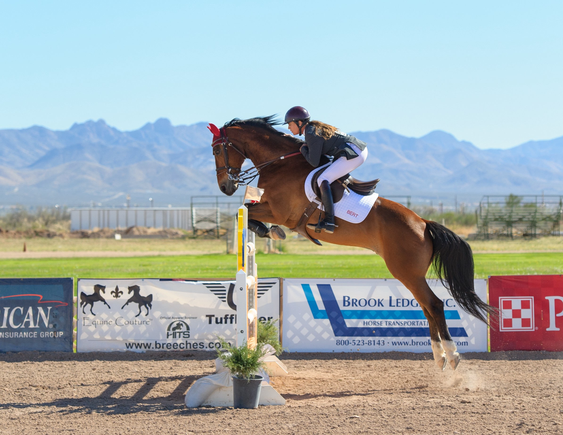 7 Rules For Life Trust And The Double Oxer By Jennifer Marie Kerner Medium