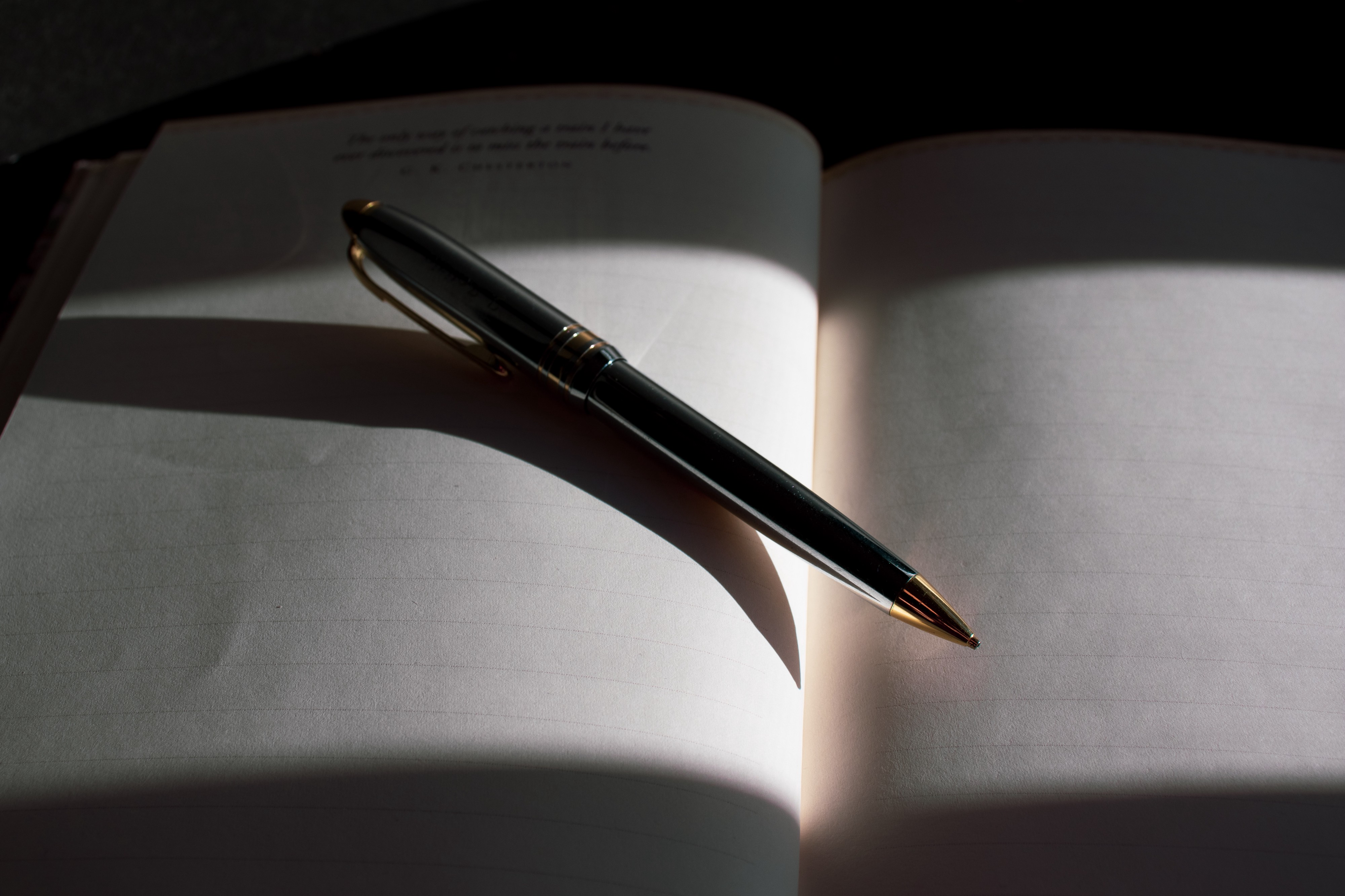 Blank page of a journal with pen laying on top