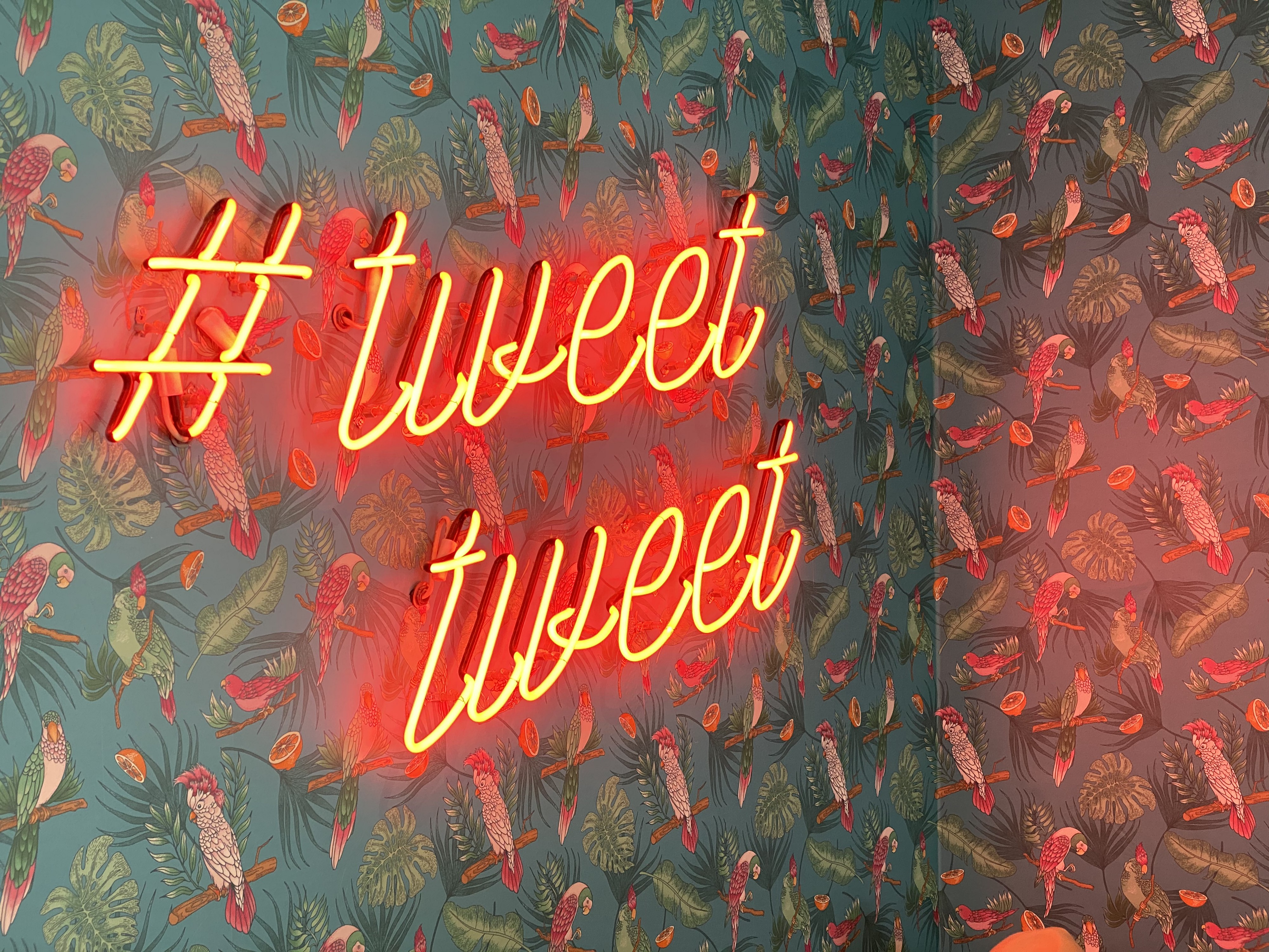 "A dark teal colored wall covered with a bird print pattern that has a neon sign that says ""#tweet tweet."""