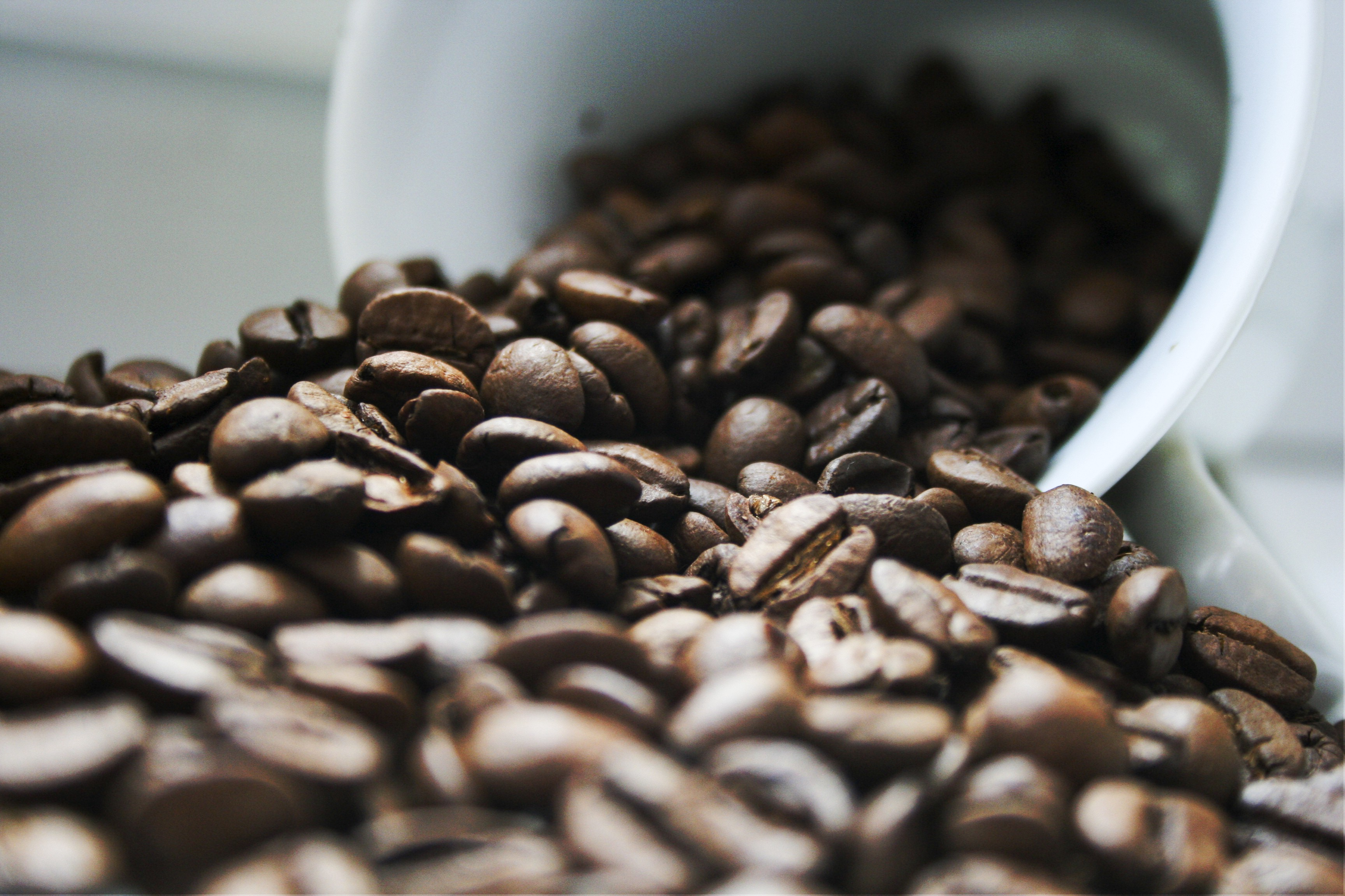 A overturned white cup, overflowing with glossy brown coffee beans.