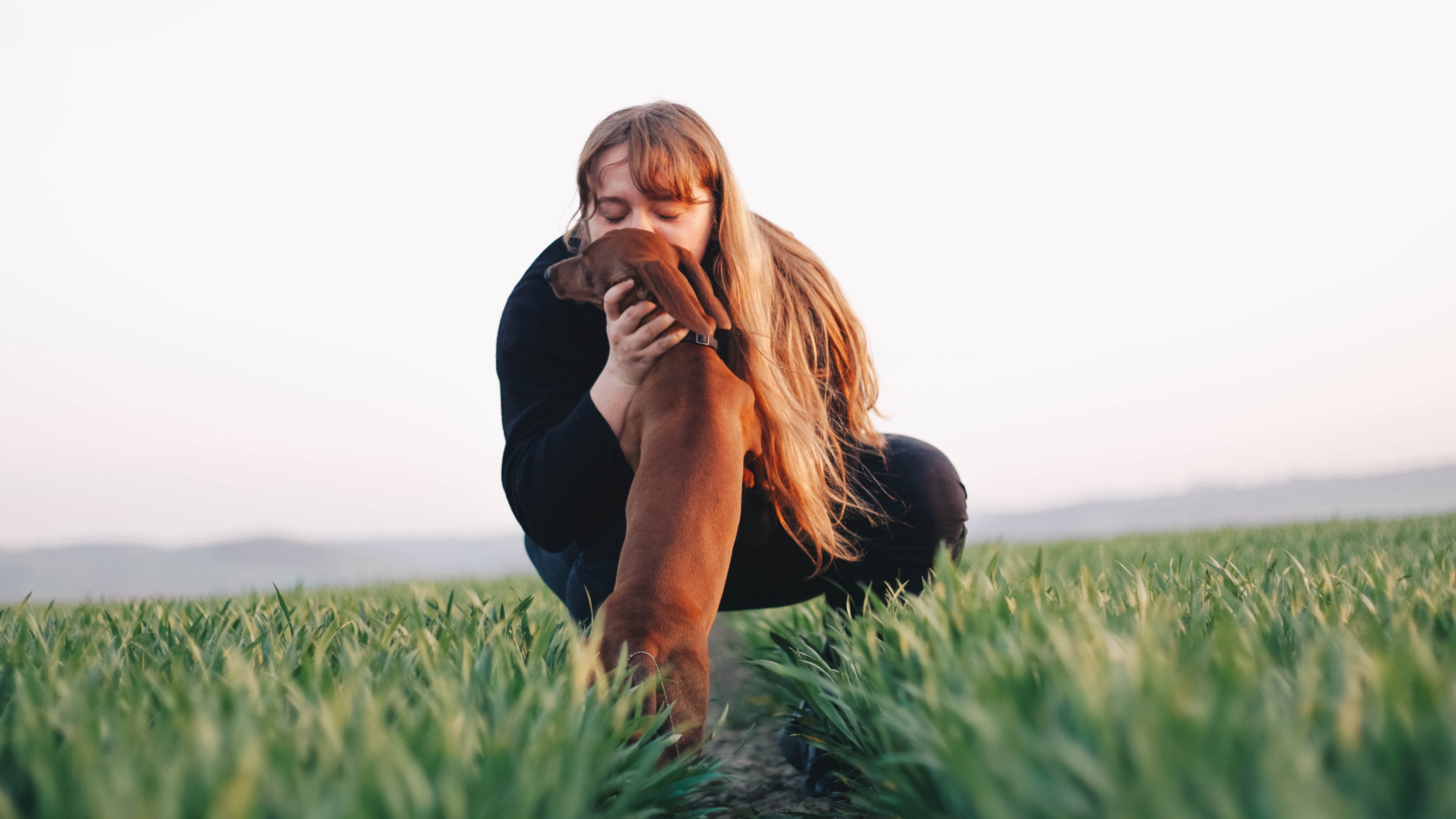 Lady kissing a dog in a green field