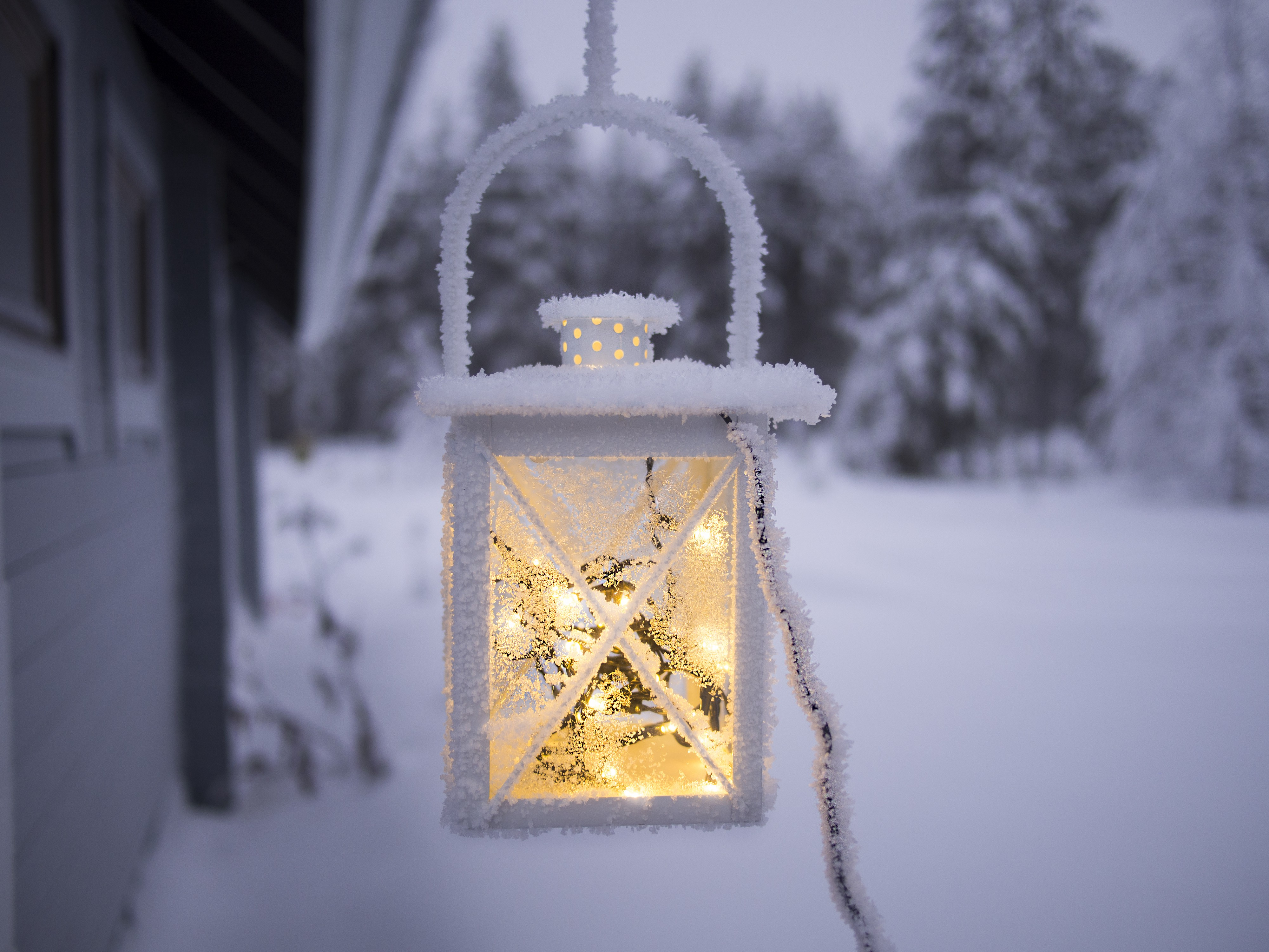 Winter scenery. In the background there is an open area covered in snow. Pine trees covered in snow in the farther back. In the foreground is a snow covered lantern, with a yellow glowing light inside.