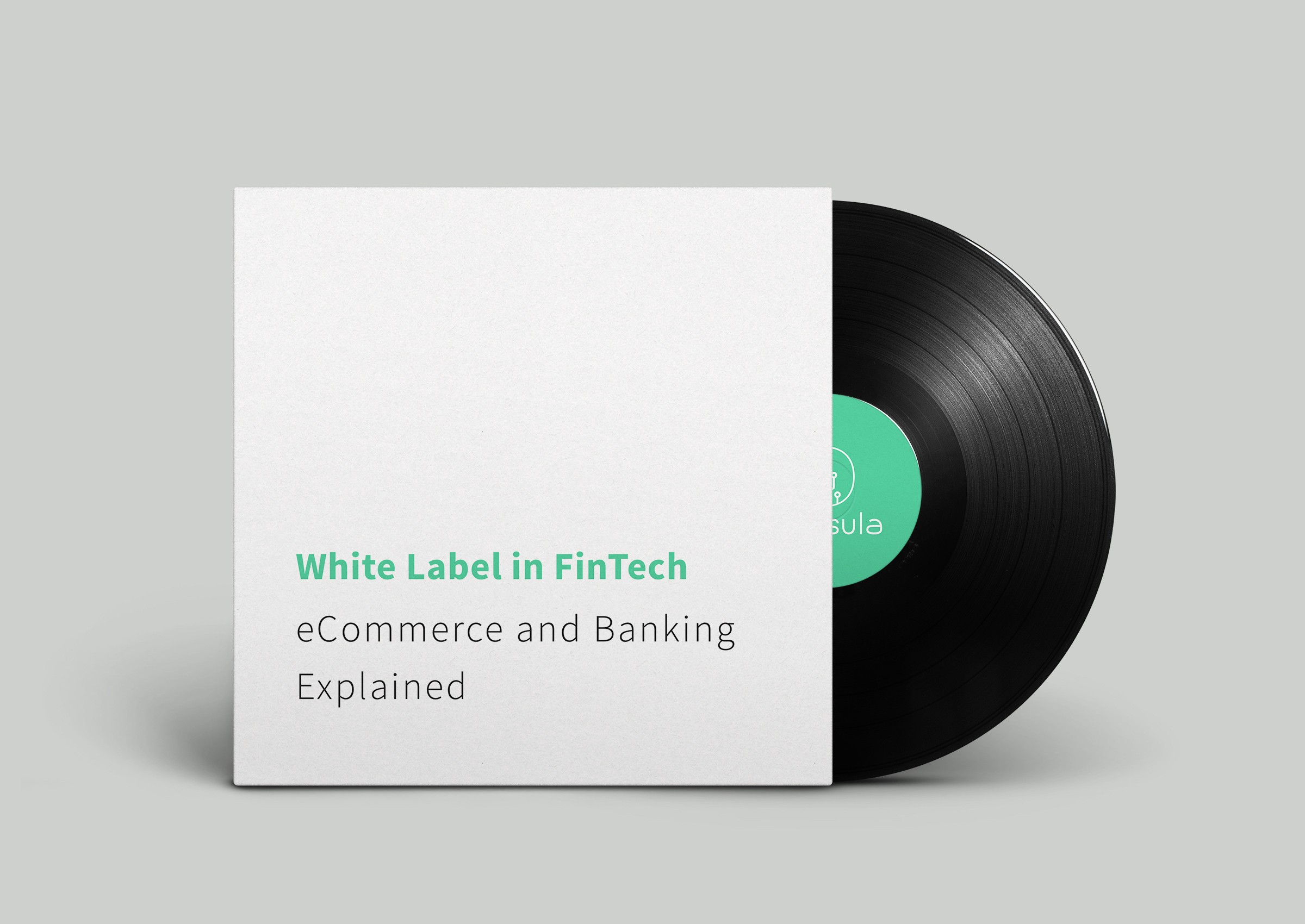 White Label in FinTech: eCommerce and Banking Explained
