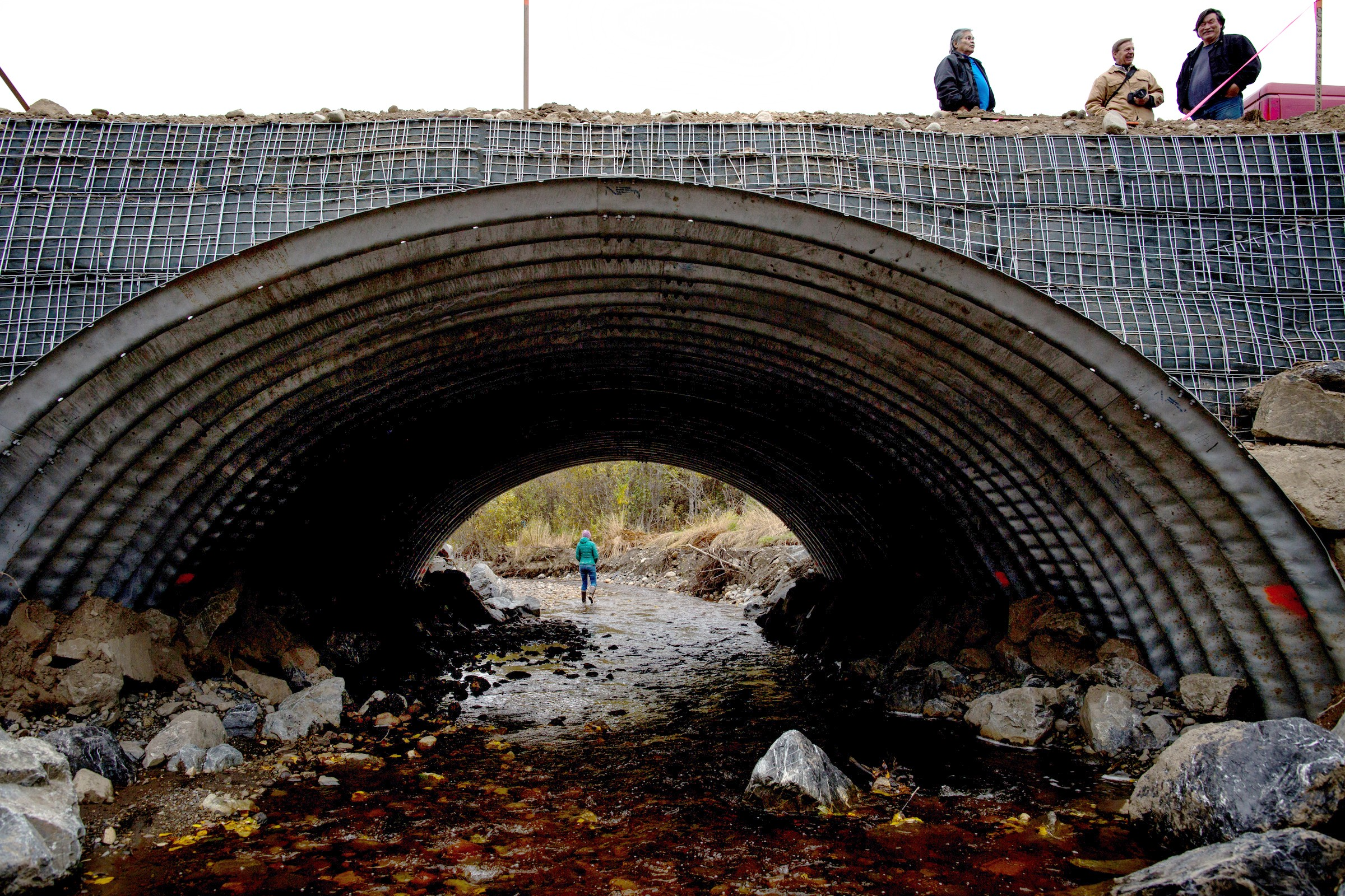 Fish-friendly roads? Yes, that's a thing  - Updates from the