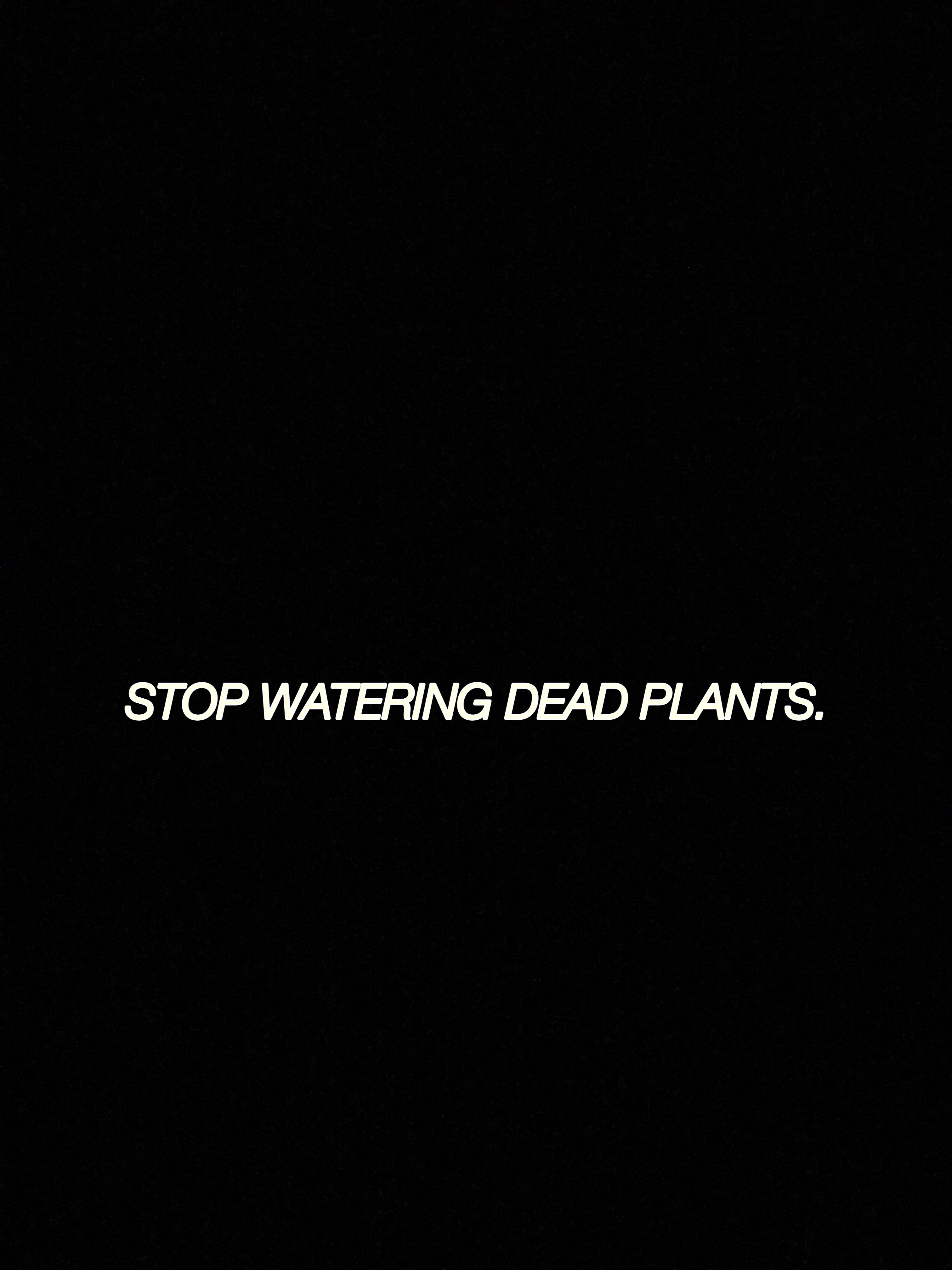 a note to self: you need to stop watering the dead plants in your life