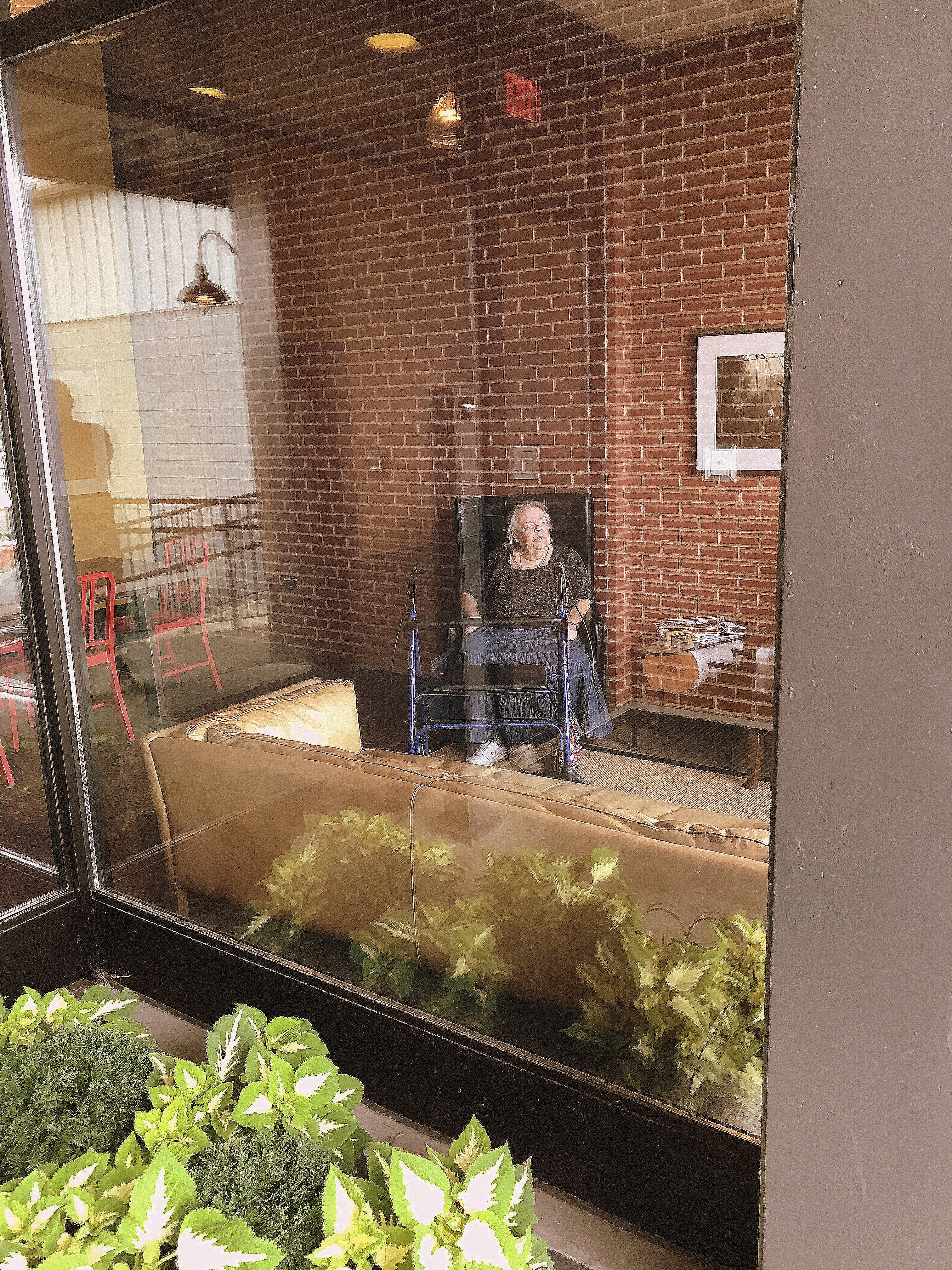 Photograph of an elderly woman with walker seated in the lobby of a building looking outward behind a glass wall with a flower boxes on the outside with lush looking greenery