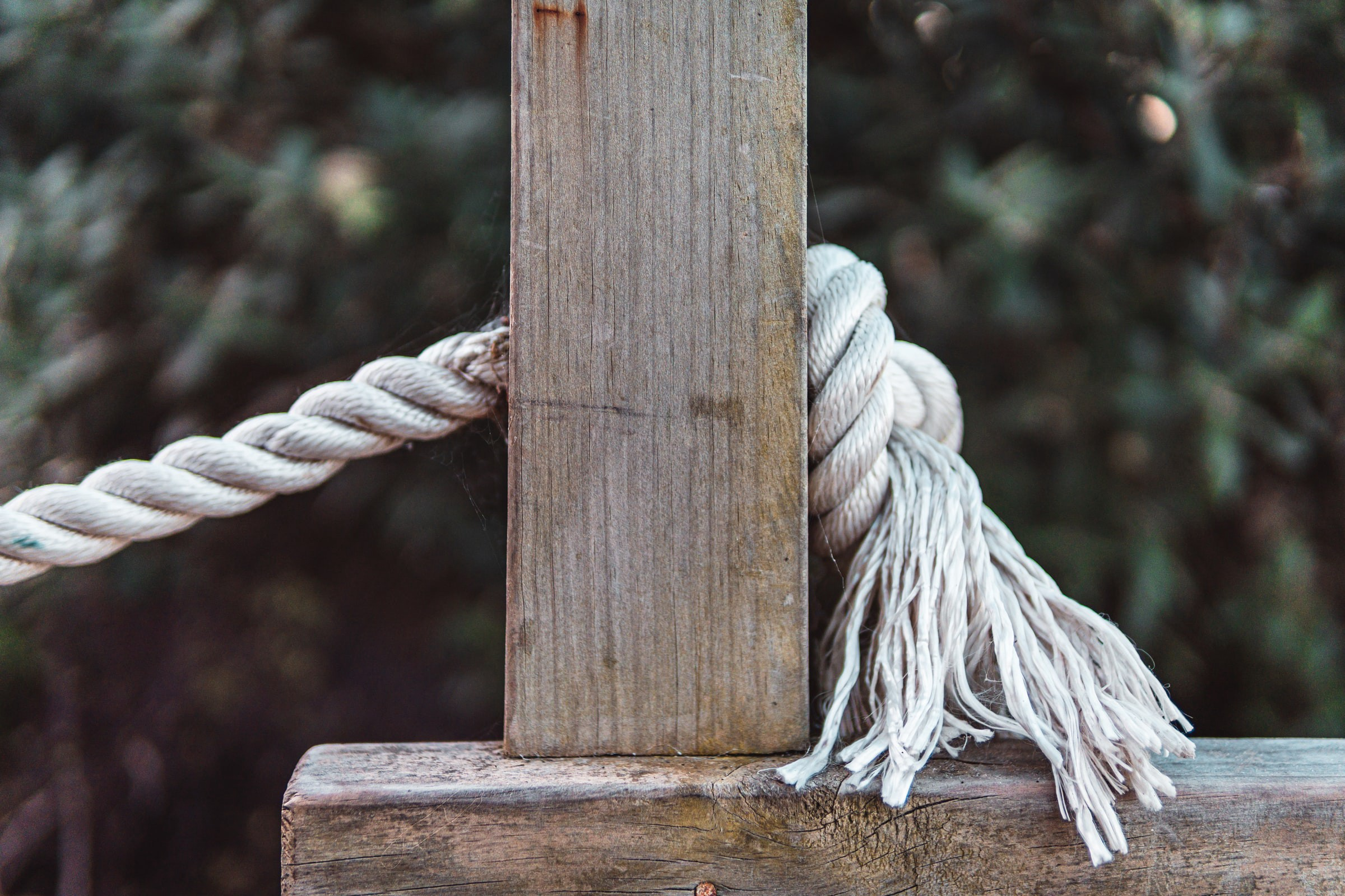 Why a Rope Can Take You Back to Present