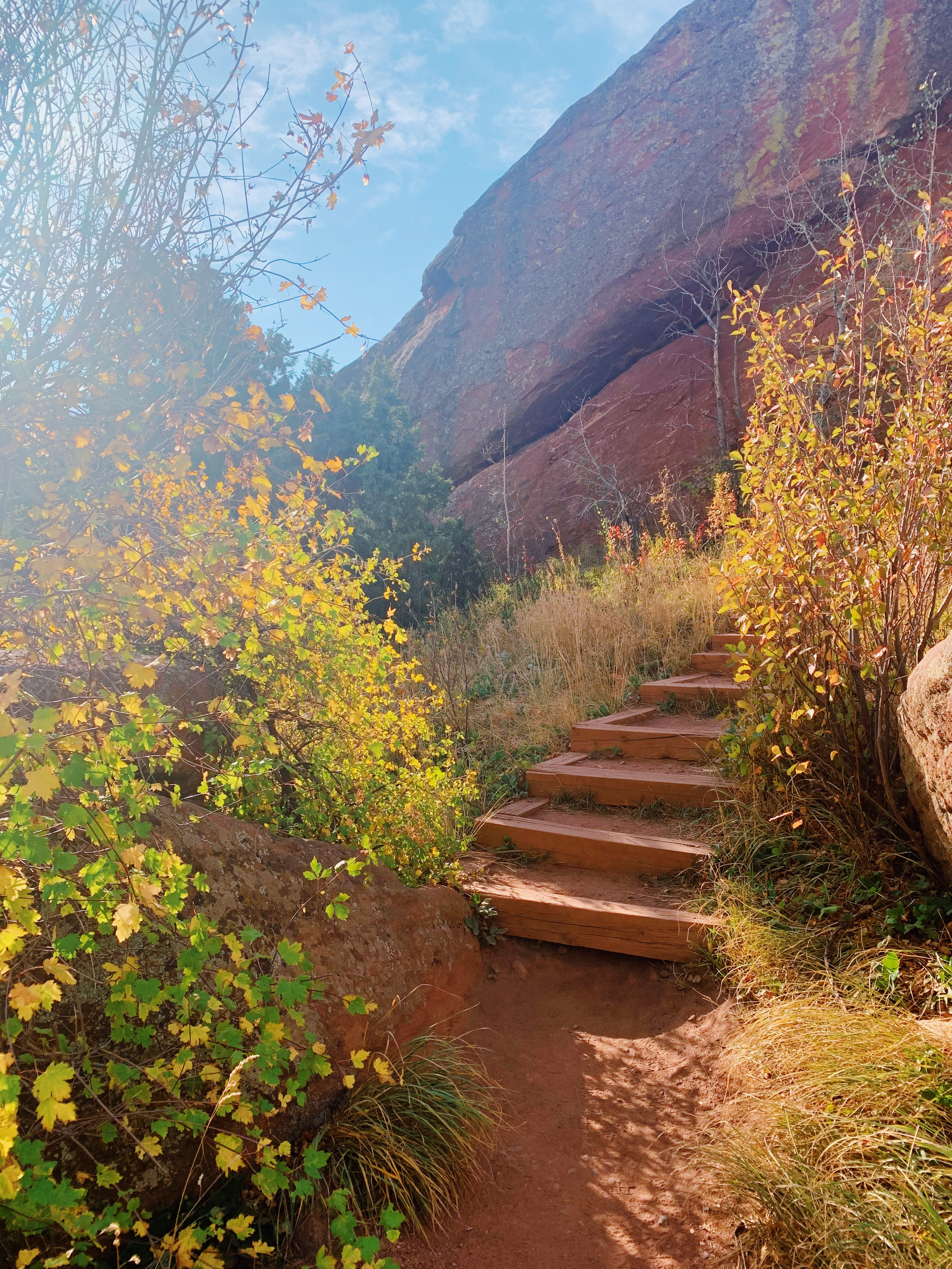 The image is a man-made staircase of wood and rock in Colorado between shrubbery changing for Autumn as the sun shines.