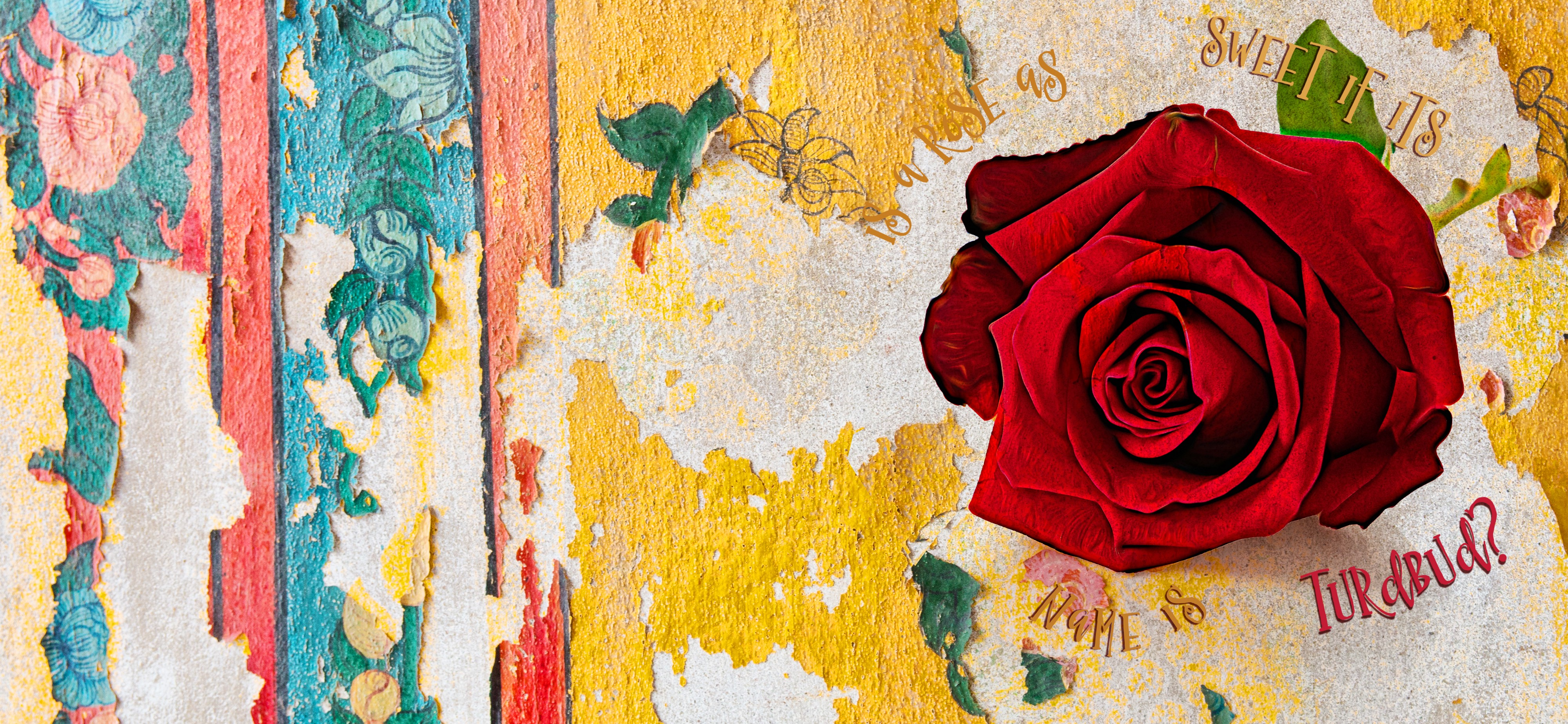 Rose painted over a peeling wall mural