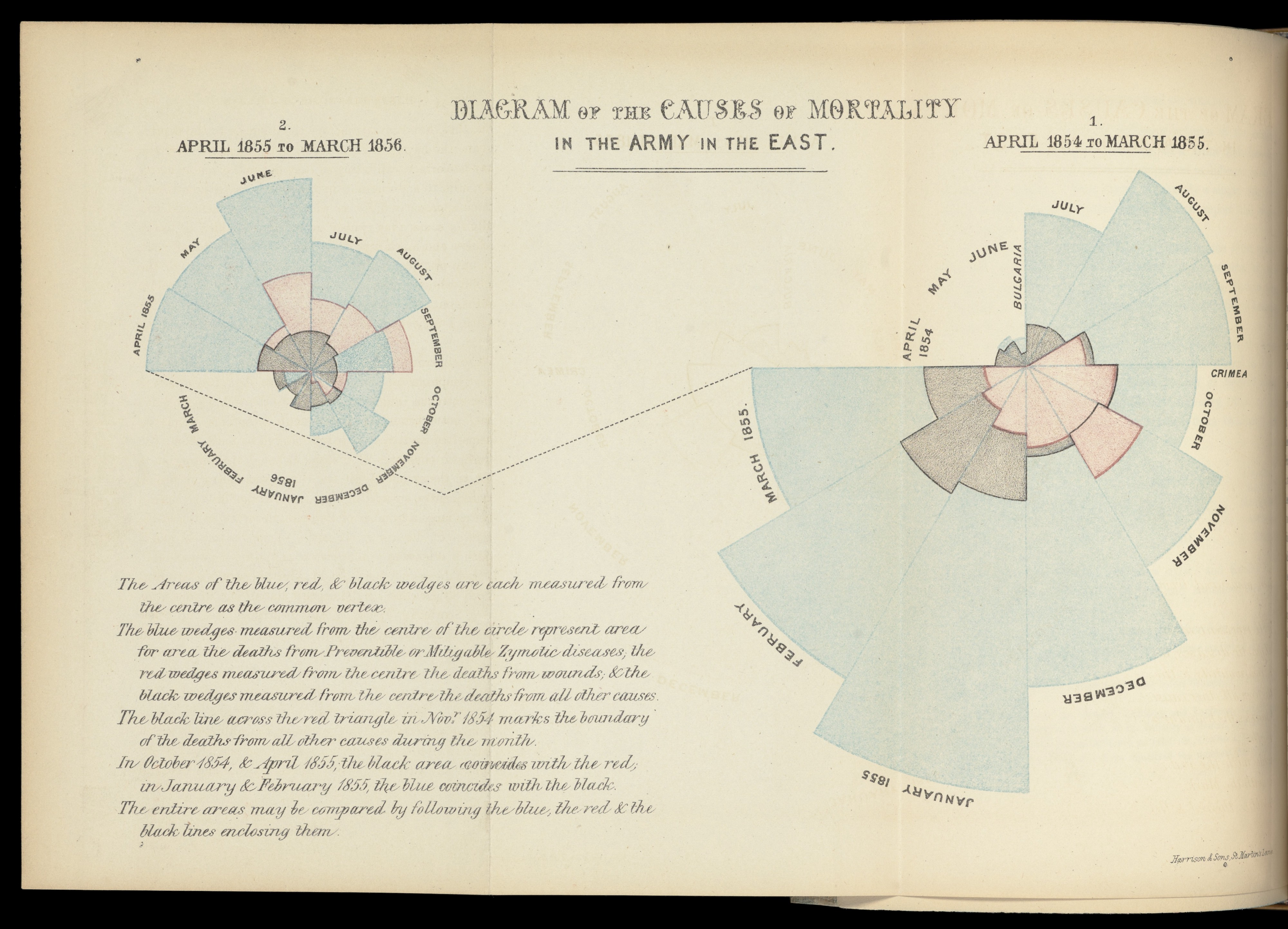 Florence Nightingale's Rose Diagram showing two charts, comparing the mortality rates of soliders before and after a sanitation drive.