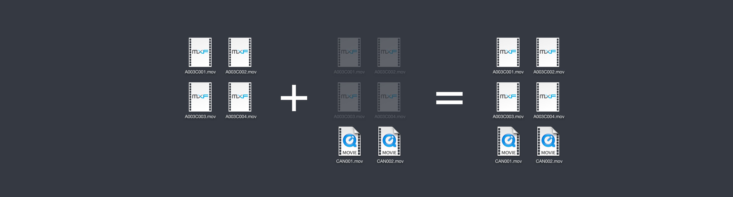 Save time, copy just what's new  - Hedge - backup software for