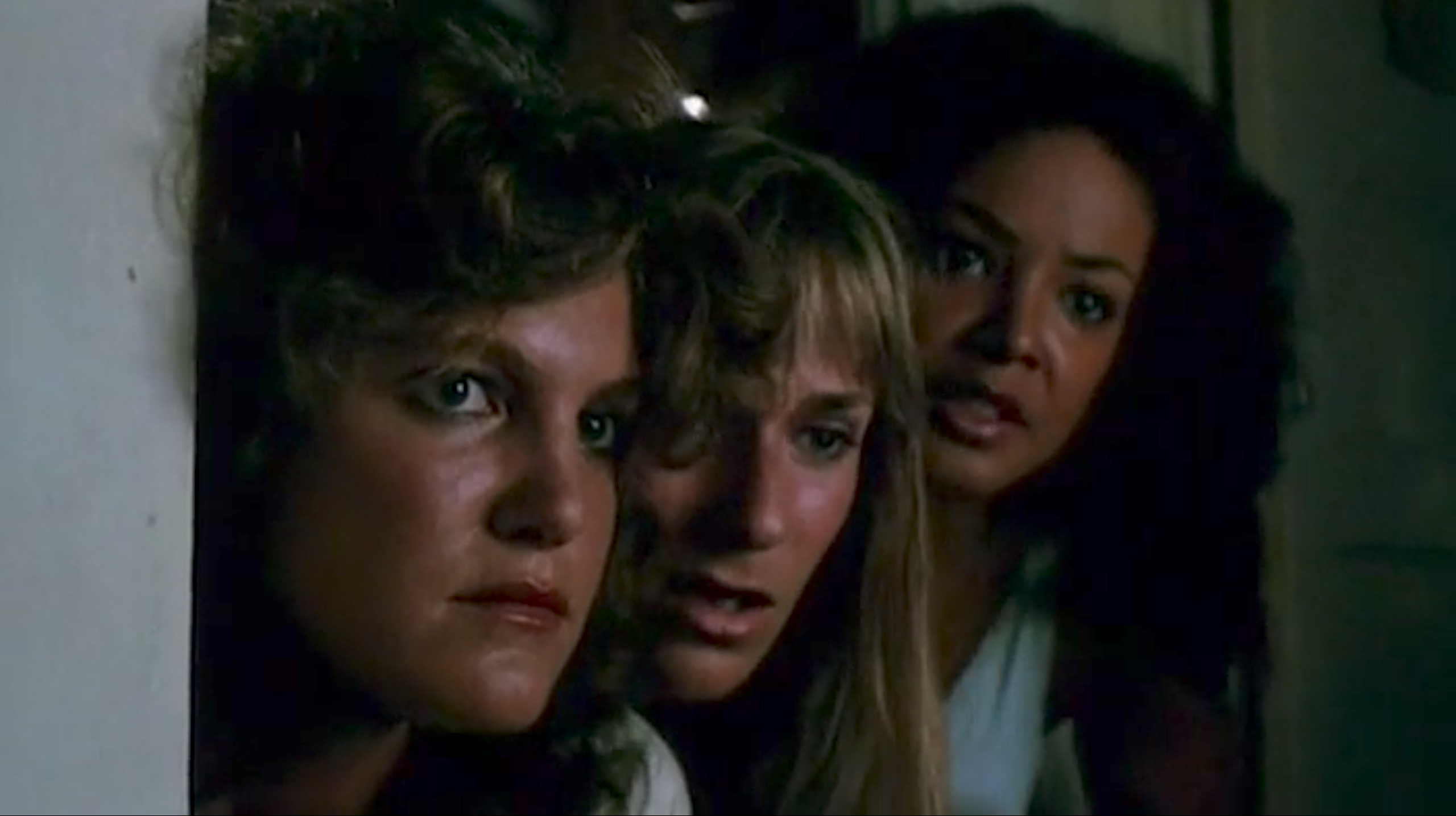 THE SLUMBER PARTY MASSACRE (1982) is a biting, feminist satire of