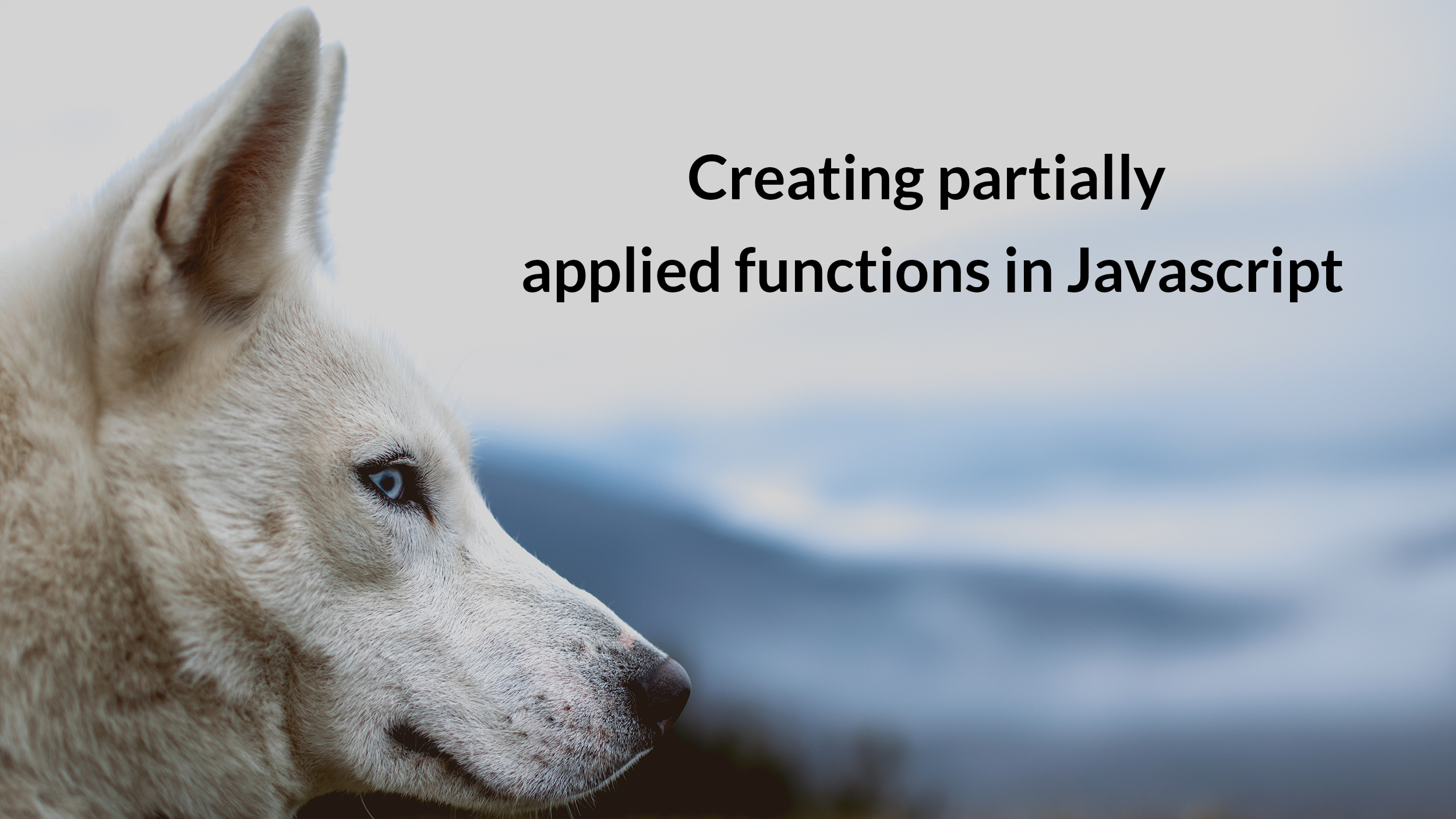 Creating partially applied functions in Javascript - codeburst