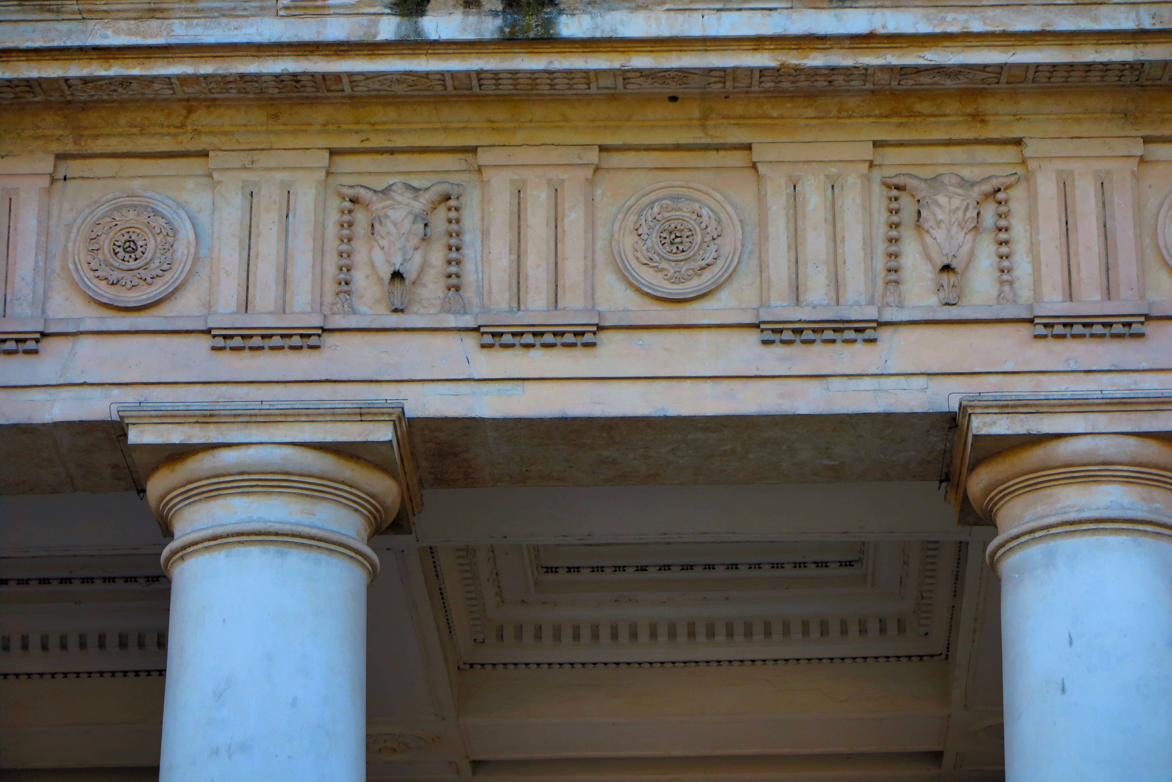 A frieze with Tuscan columns, flowers and brucaniums