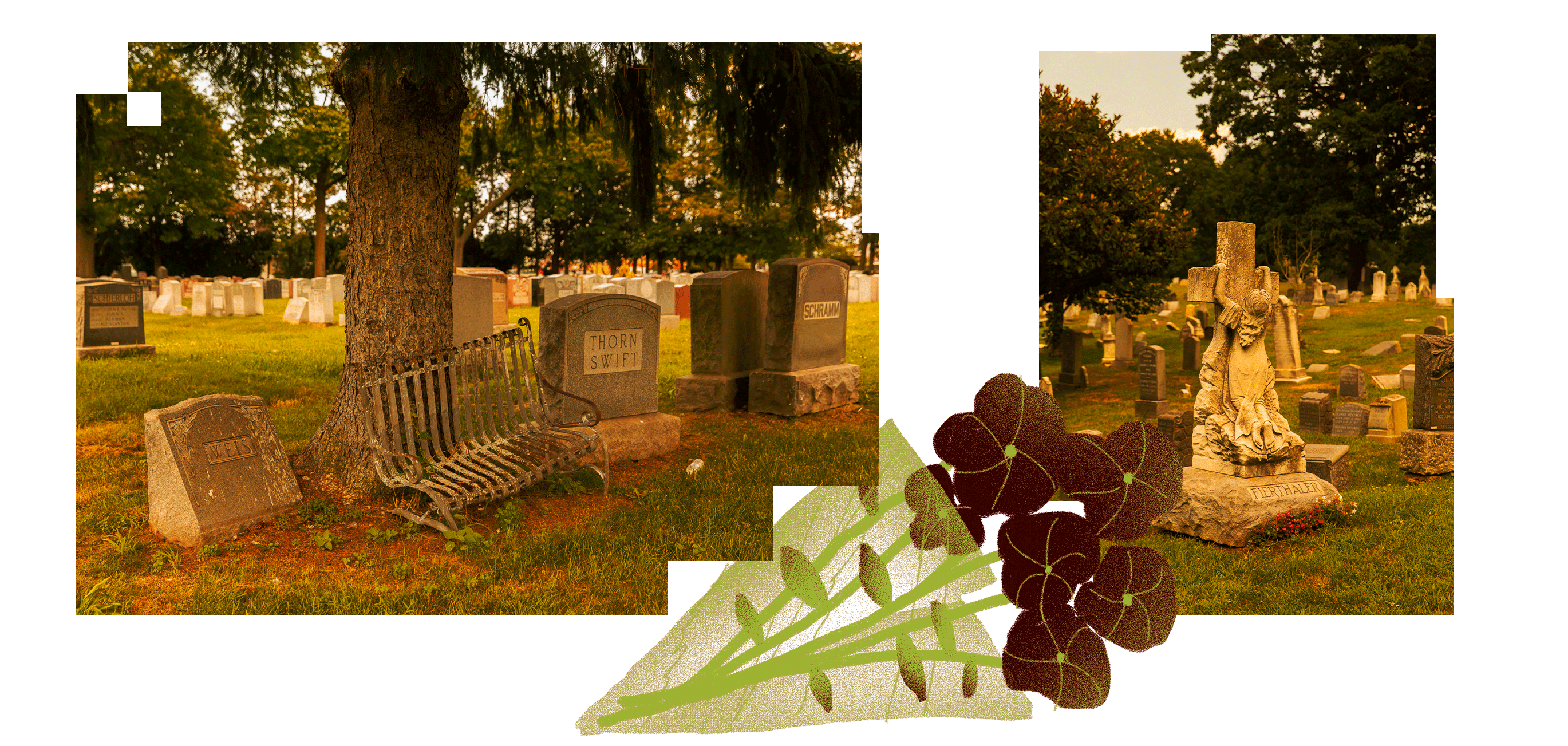 How Ancestry com's Find A Grave Encourages Bad Actors and Bad Data