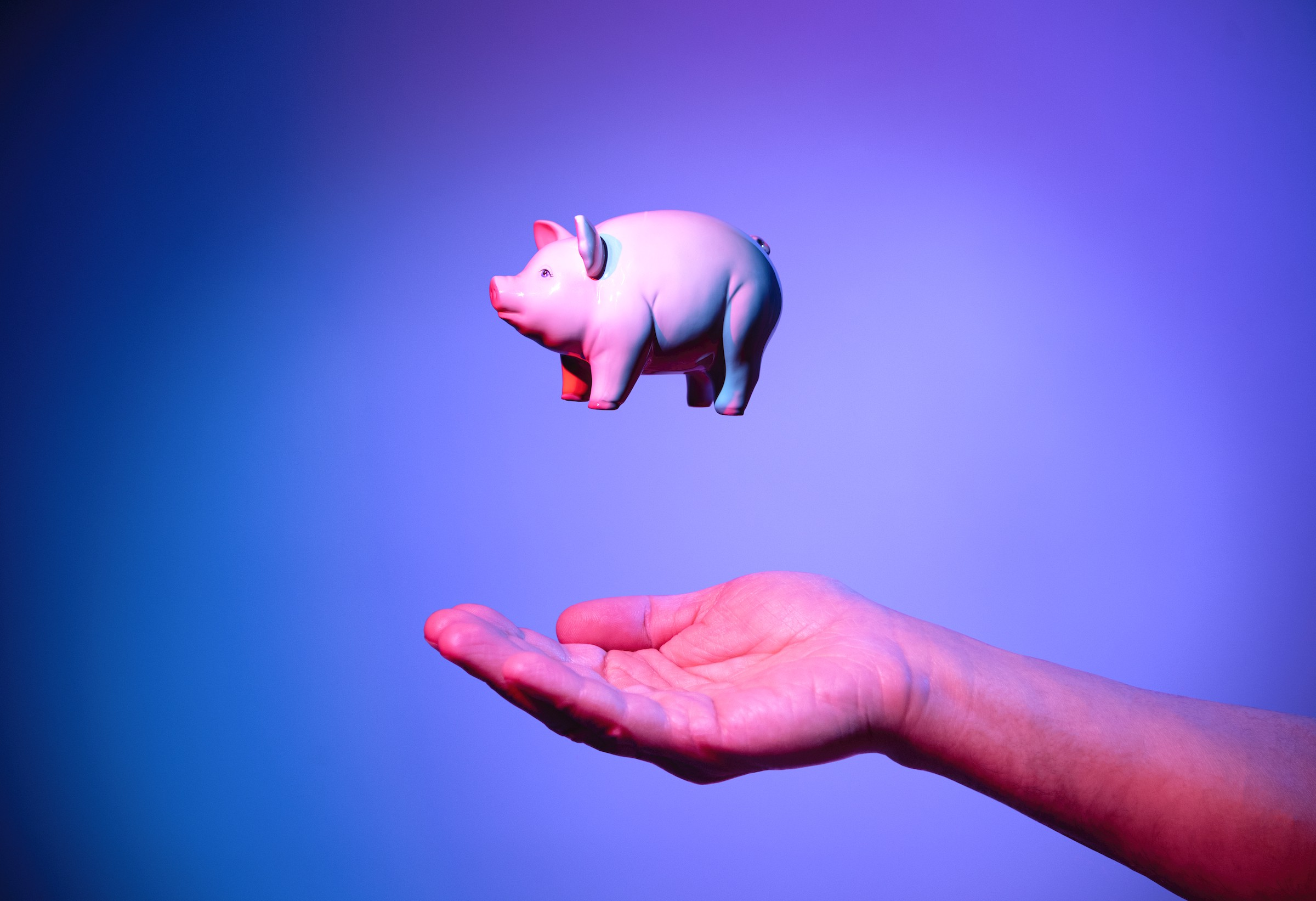 A pink piggy bank in mid-air above someone's hand.