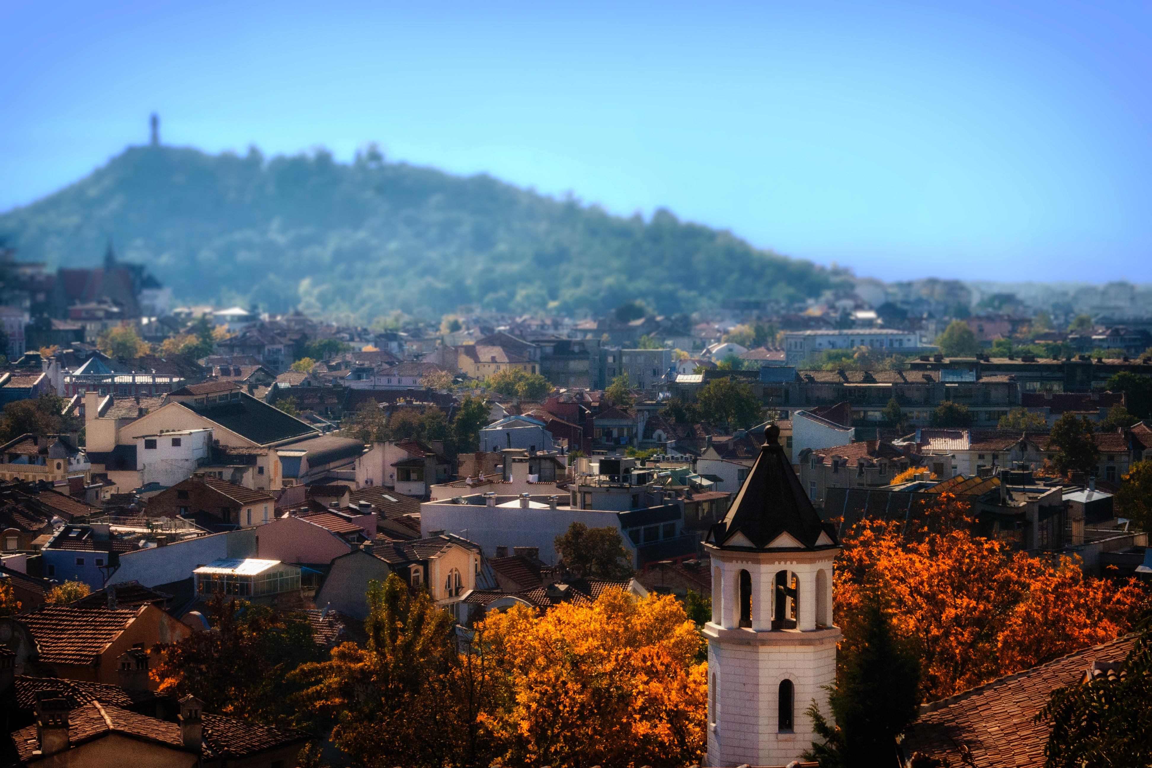 Why Is Bulgaria's Population Falling Off a Cliff? - In a State of