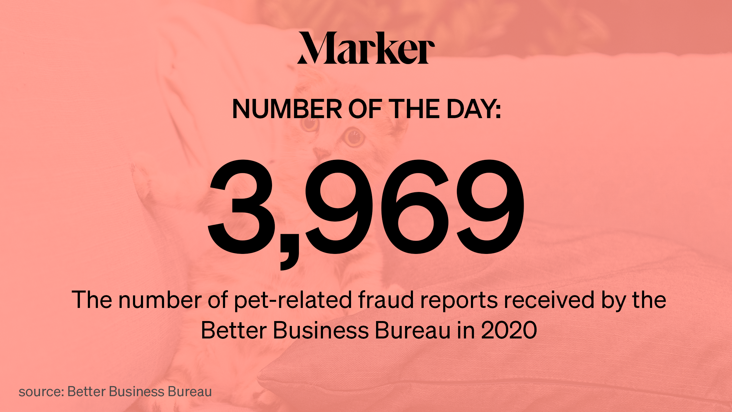 Marker Number of the Day: 3,969—The number of pet-related fraud reports received by the Better Business Bureau in 2020