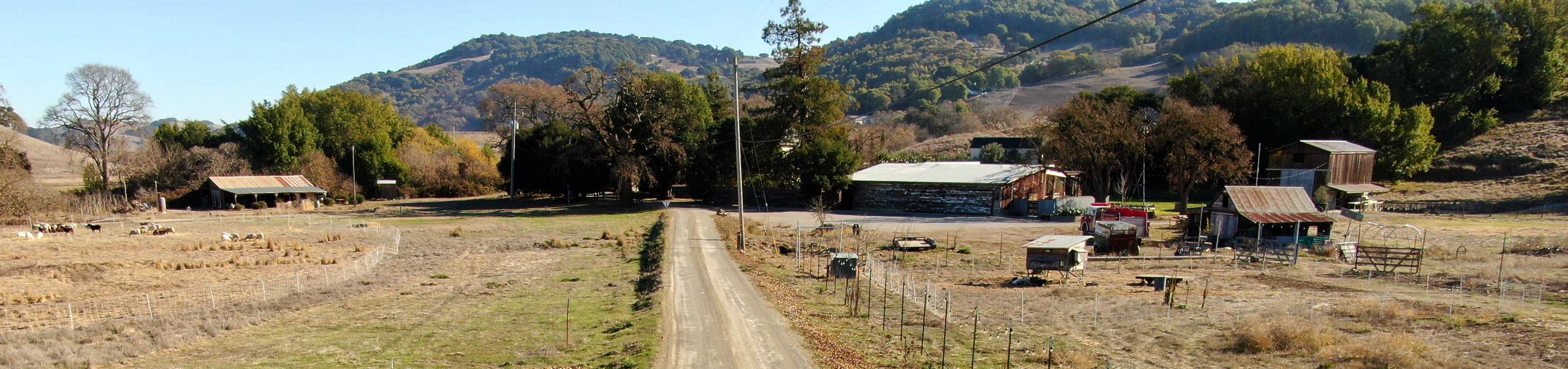 Road crossing a ranch with trees and mountains on the background a few animals to the left and a few human-made structures to the right like a hut a barn and fences. This is just a cool picture of where I live and is not really relevant for the article.
