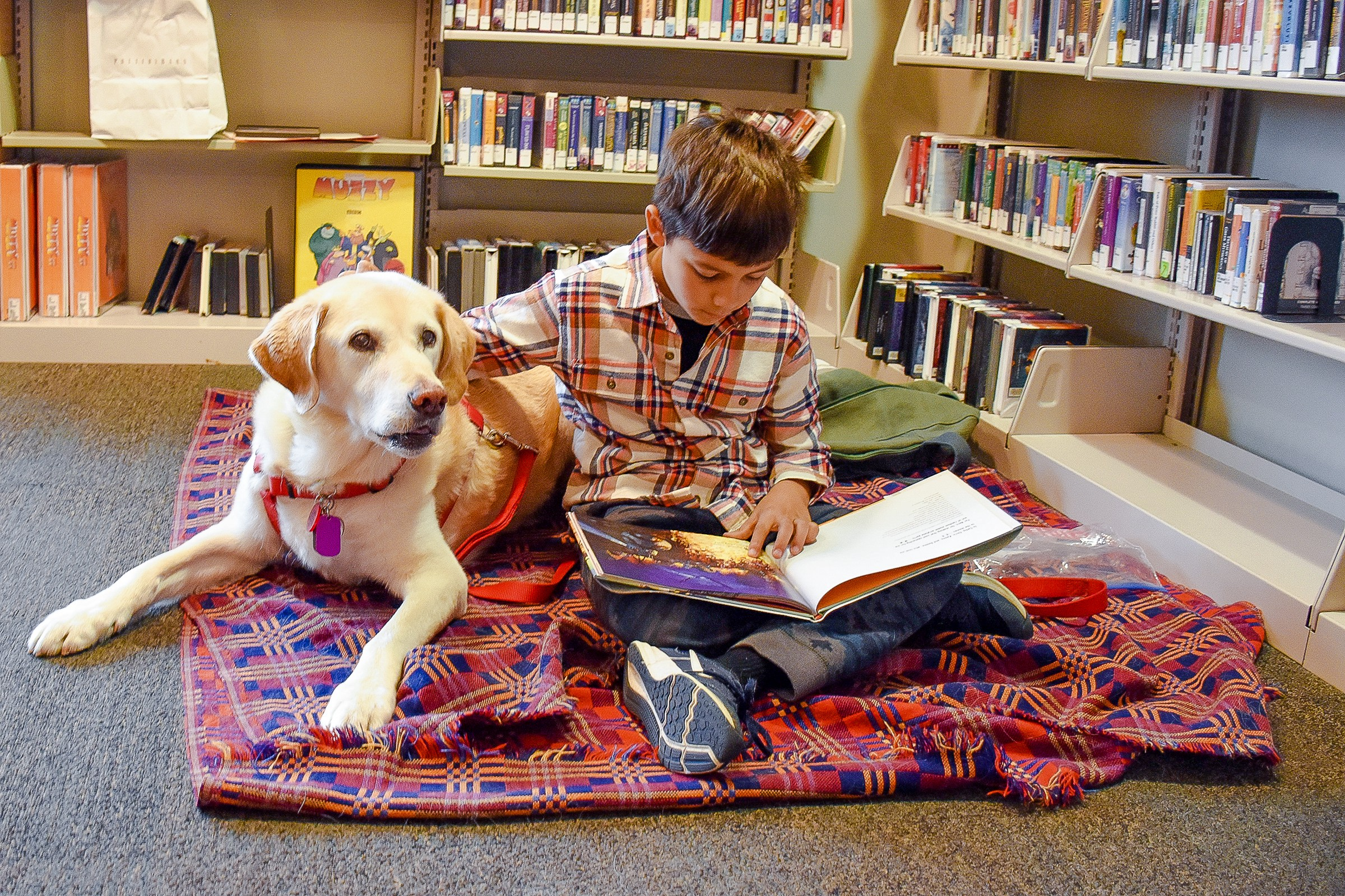 Image result for Library read to the dog""