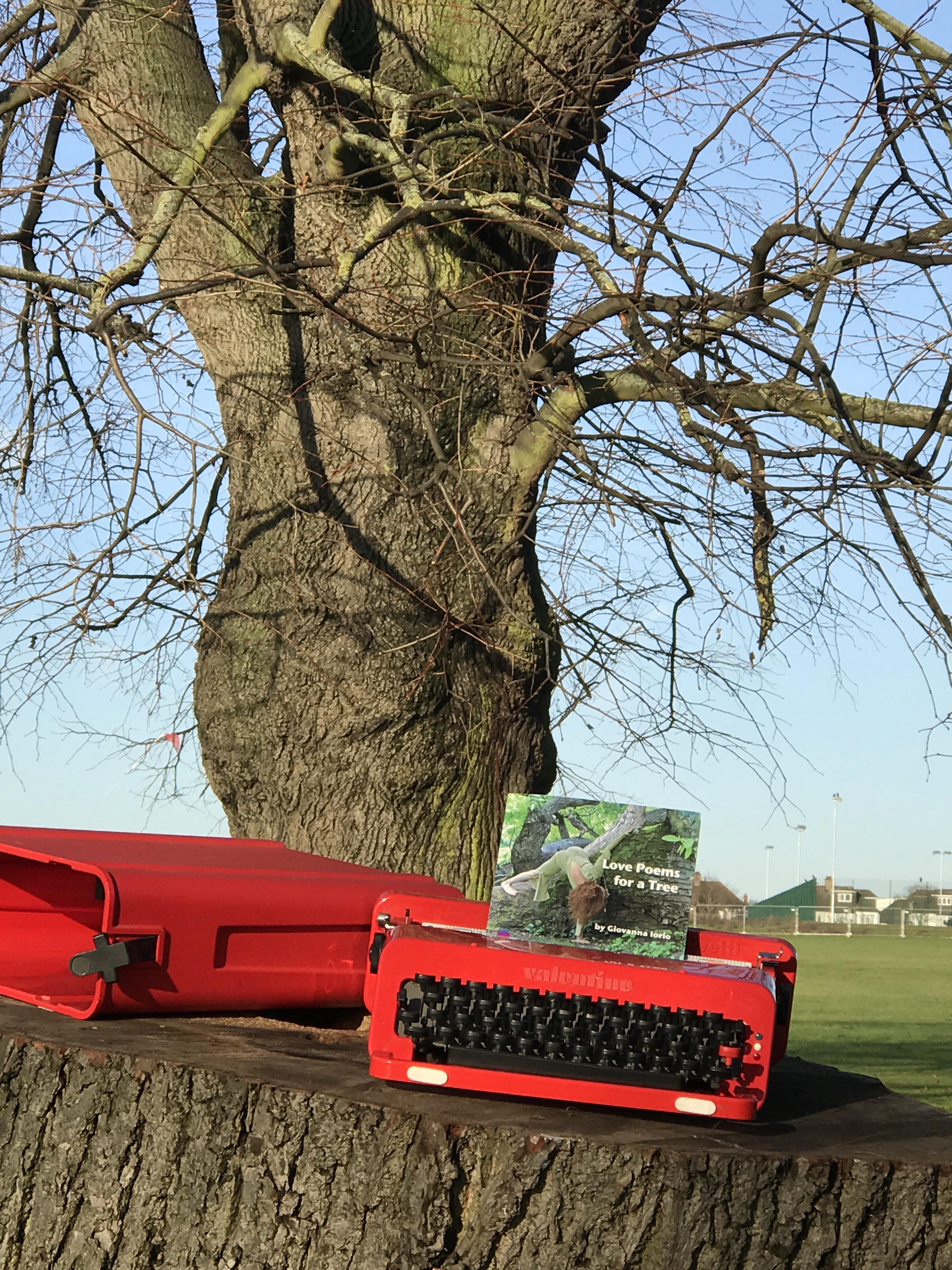 I WILL WRITE AND READ MY POEMS IN LONDON PARKS IN THE NEW YEAR