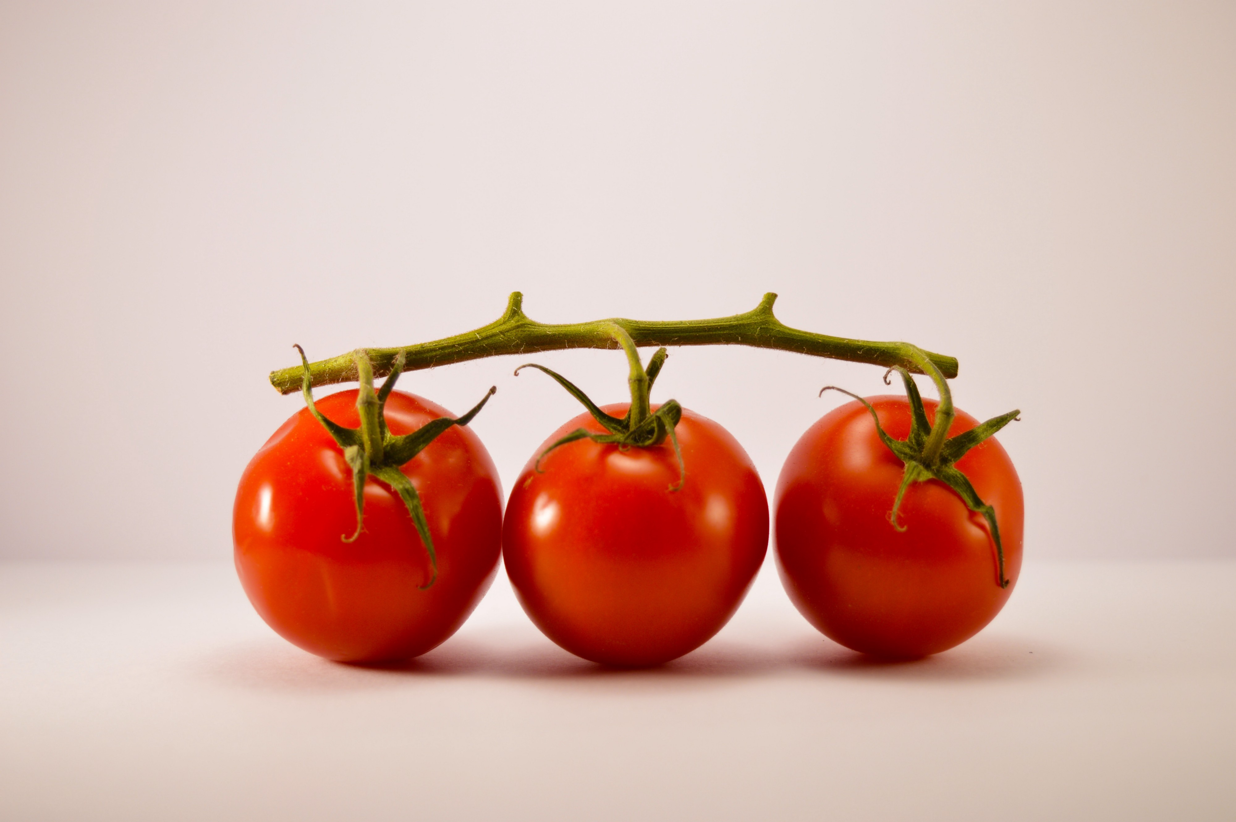 Three Tomatoes that represent the Pomodoro technique. In this article, you learn why the magic lies in the Pomodoro breaks.