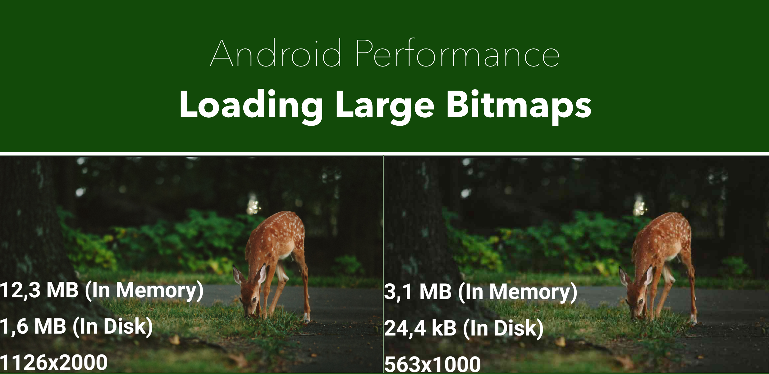Loading Large Bitmaps Efficiently in Android - AndroidPub