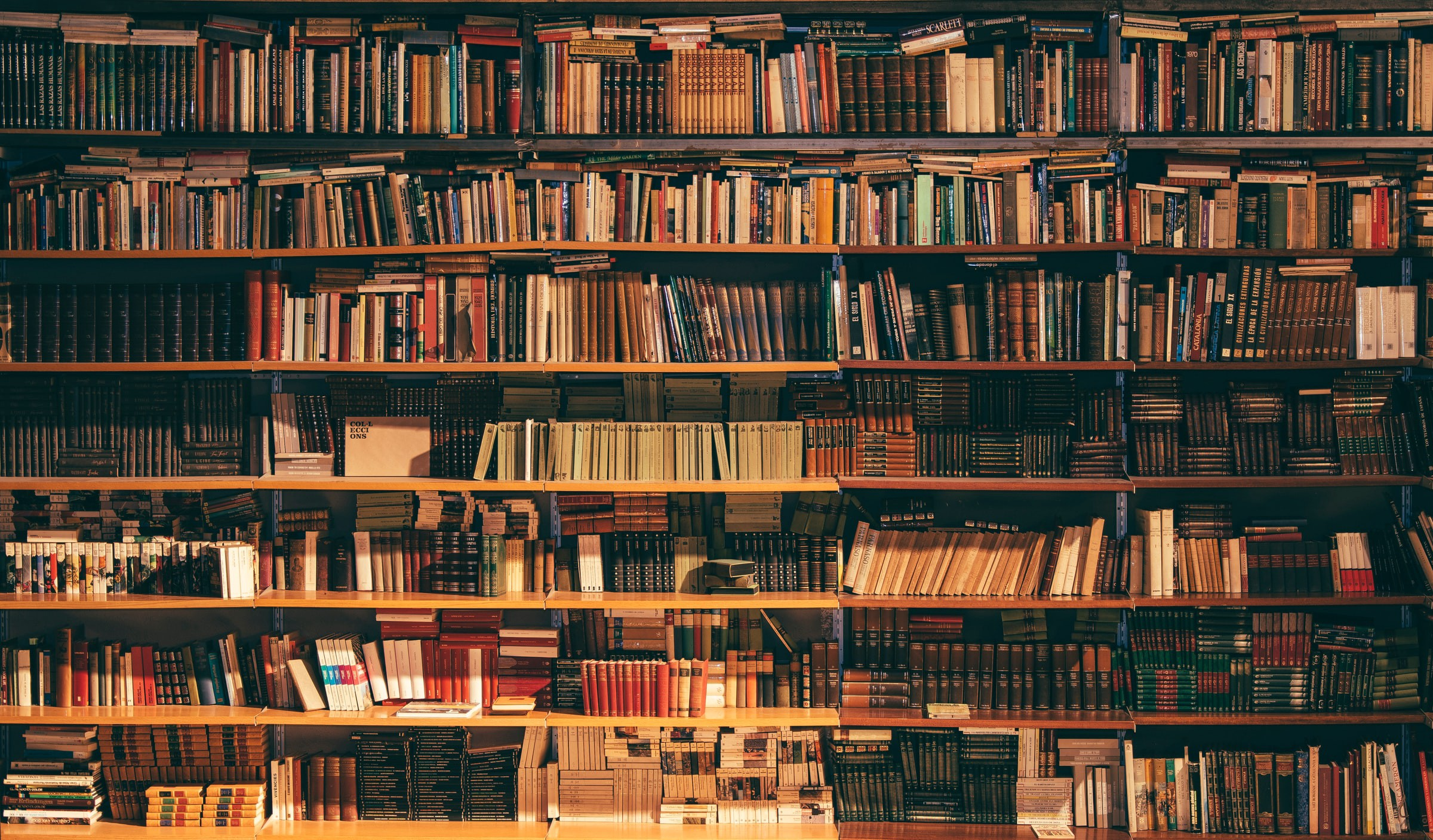 View of a large bookshelf in a library, filled with dozens of books.