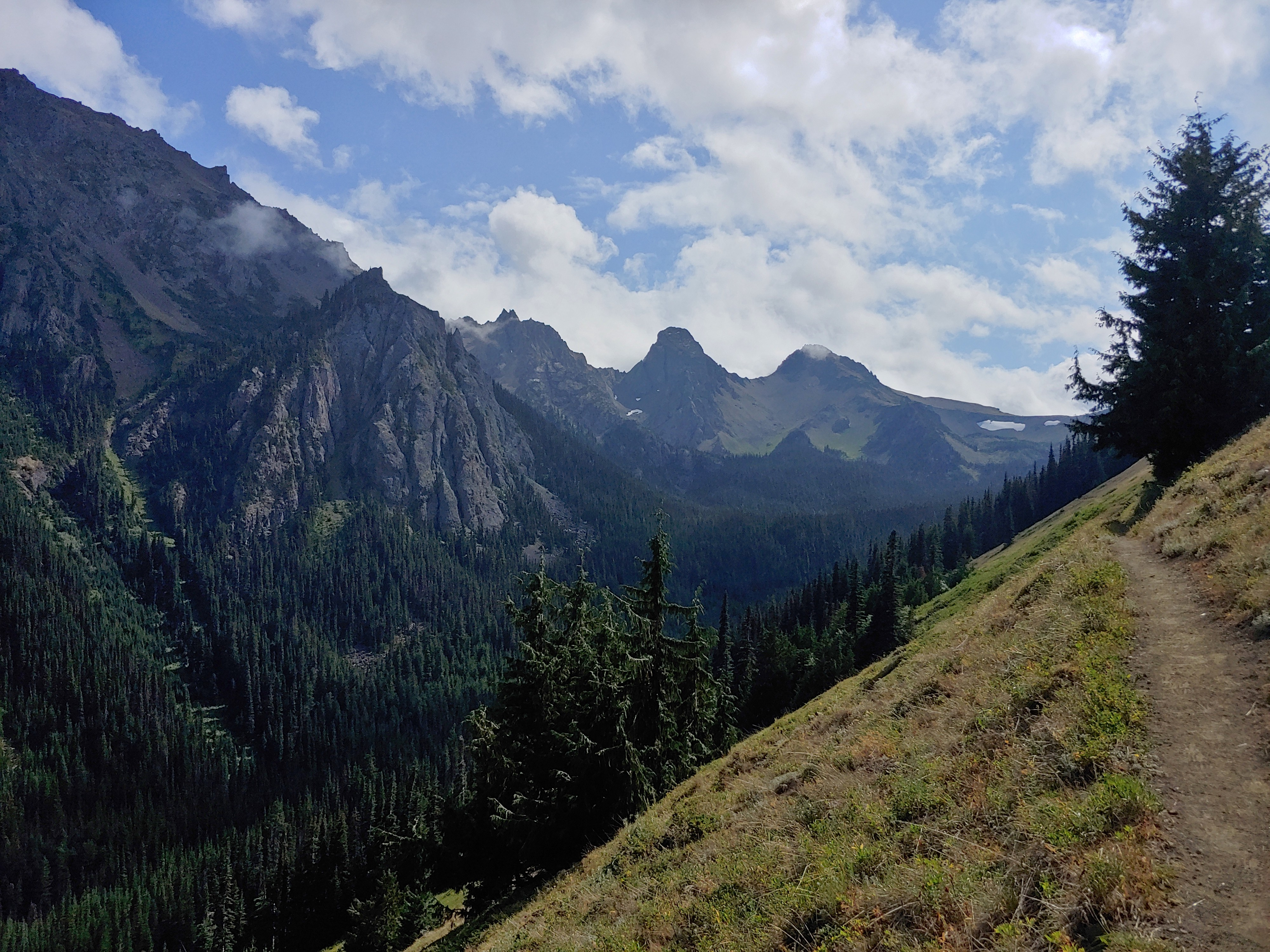 Expansive views of mountain peaks and forest stretch out from the Tubal Cain Trail in Olympic National Forest.