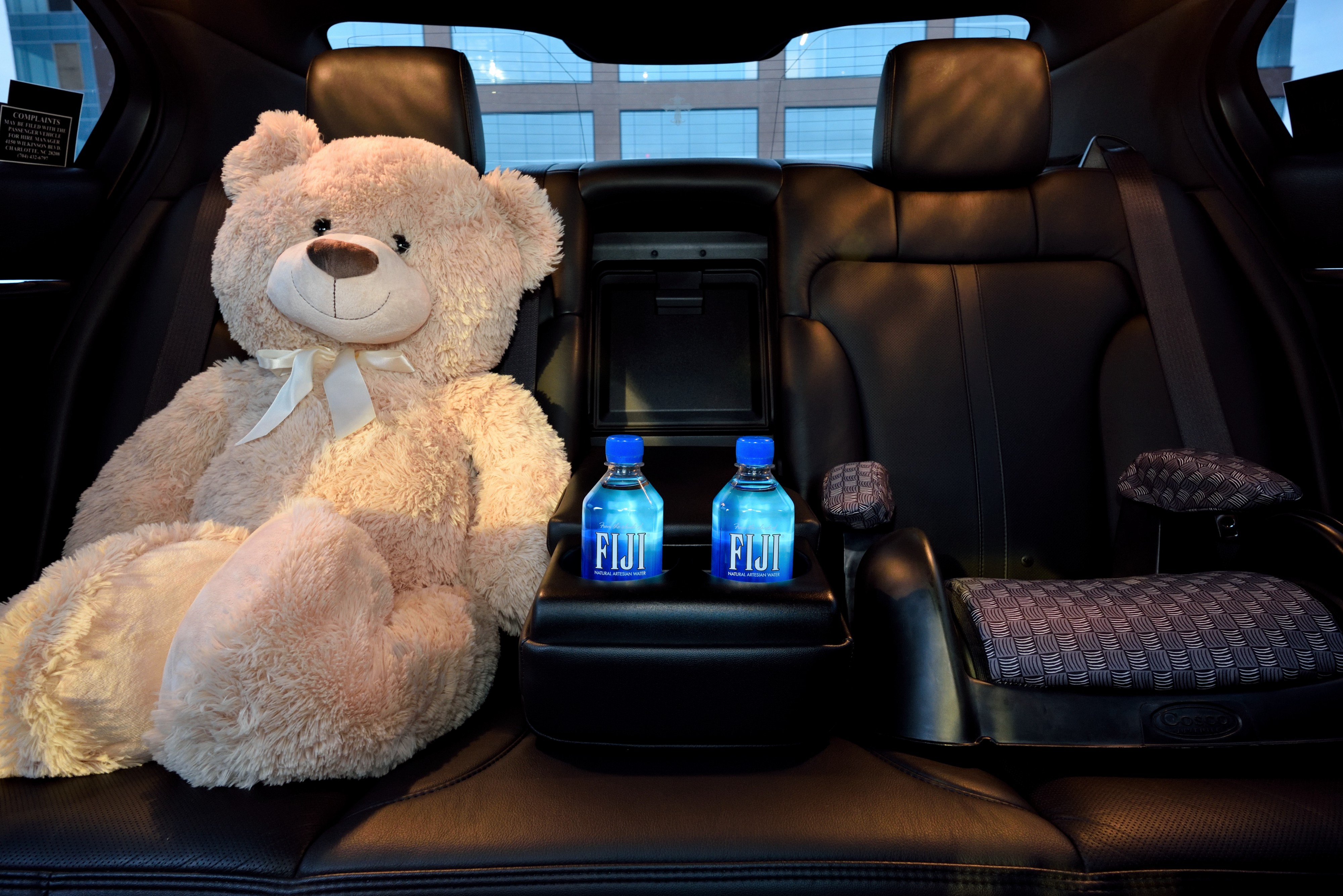 Large teddy bear sitting in the back seat of a executive sedan with child booster seat