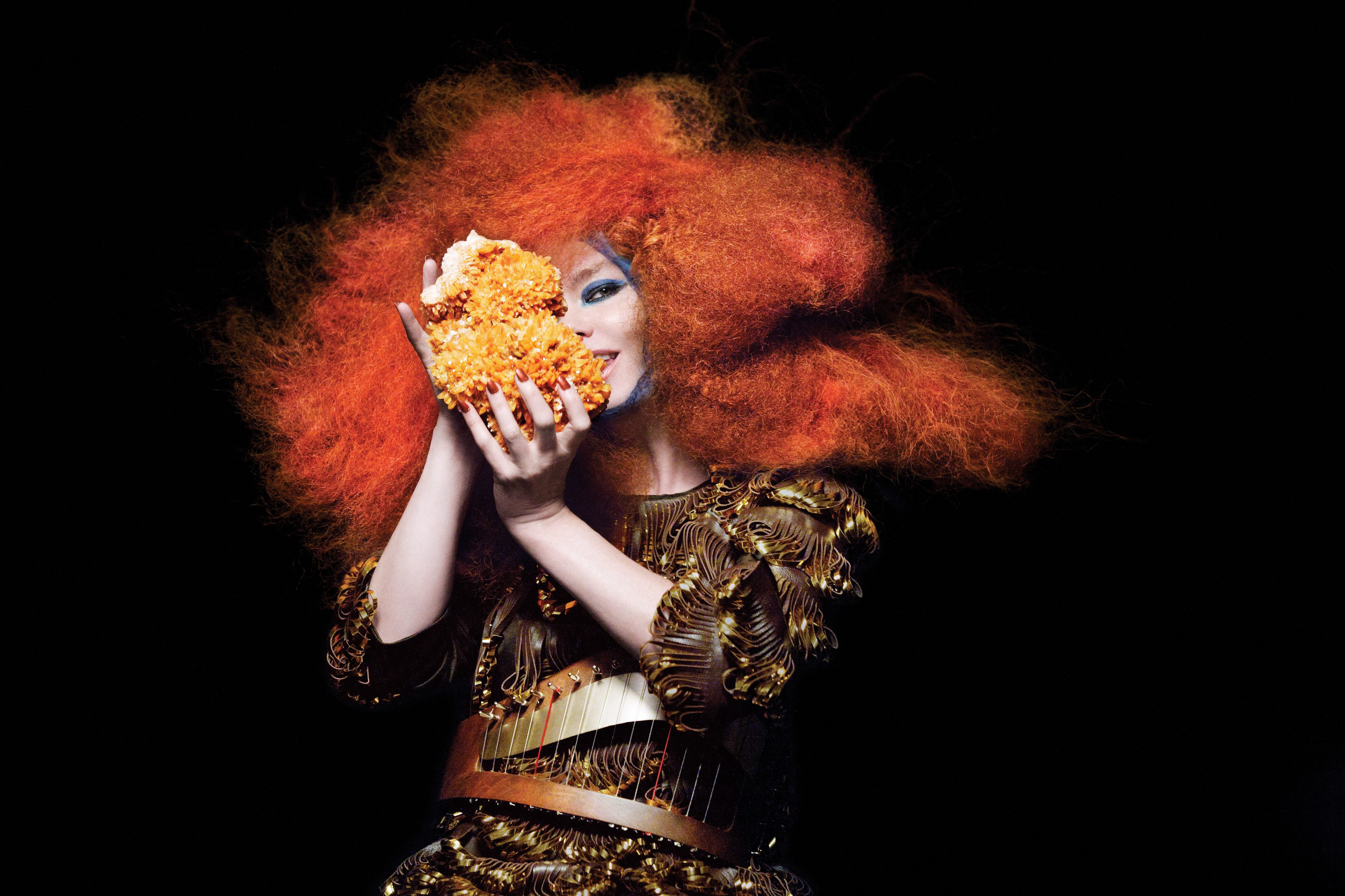 Interview: Björk talks piracy, punk, Lady Gaga, and Biophilia