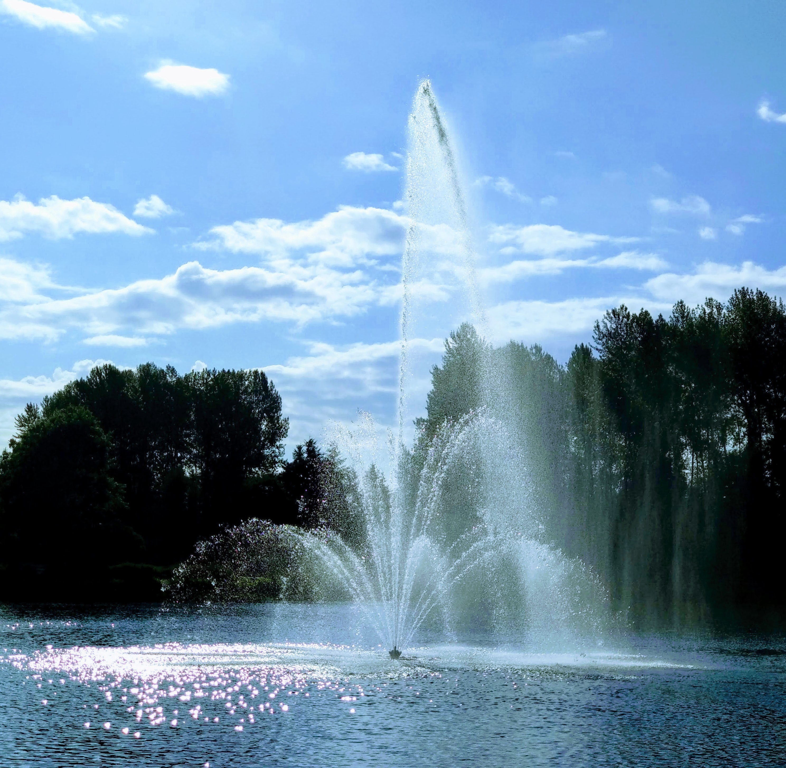 A fountain in the middle of a lake against a backdrop of trees and blue sky.