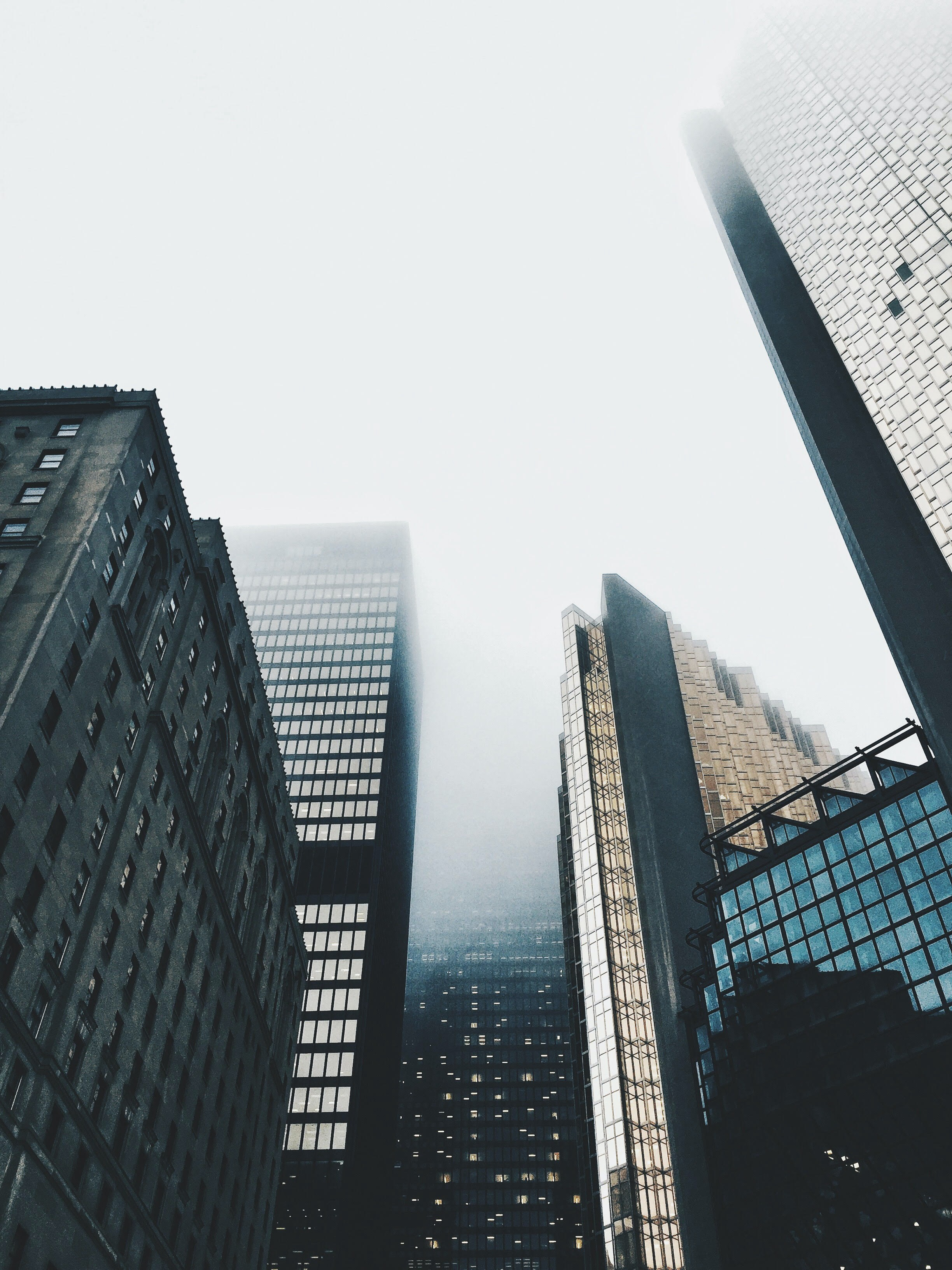 View of skyscrapers, from the ground, looking up.