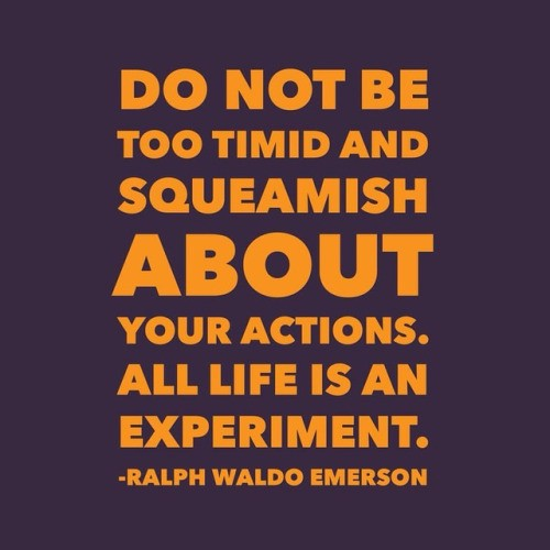 Do Not Be Too Timid And Squeamish About Your Actions All Life By Christopher J Hall Medium Get tootimid.com coupon codes, discounts and promos including 20% off at checkout and 20% off. christopher j hall