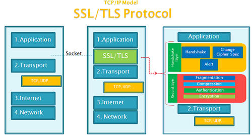 Infrastructure Security| SSL/TLS Certificates and Challenges