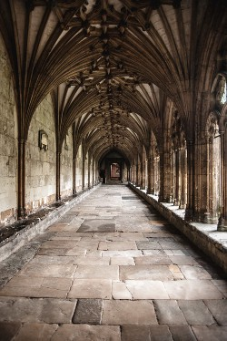 Flying Buttresses & Pointed Arches: Defining Aspects of