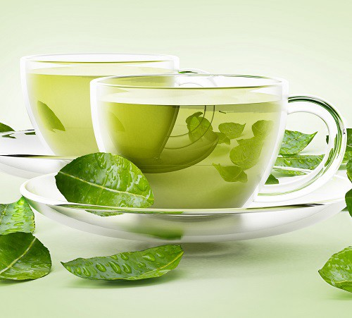 Green Tea Drinking Reduce the Consumption of Calories | by Halmira Tea | Medium