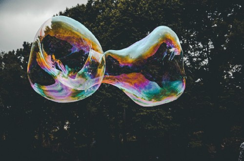 The Culture Bubble—Why You Stop Seeing Clearly and Start Acting Foolishly