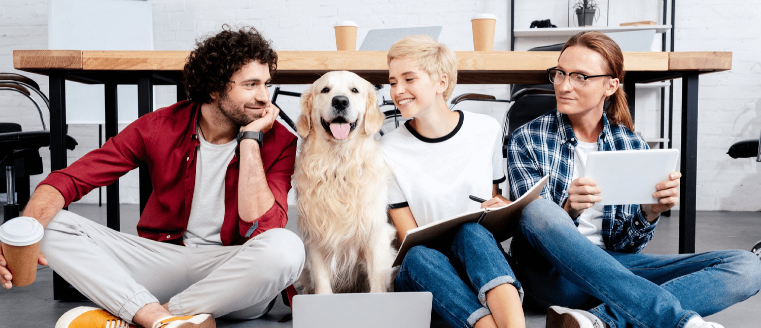 7 Incredible Tech Solutions To Inspire Innovative Pet Startups By Stfalcon Com Medium