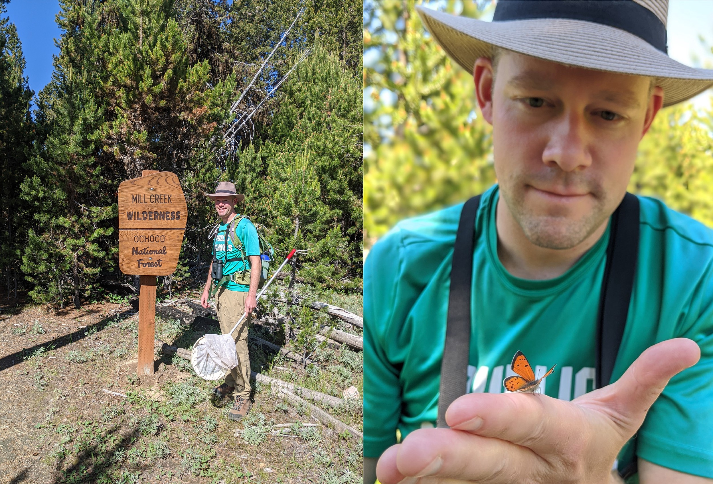 2 pics: One showing man with net next to sign; one shows him looking at small orange butterfly on hand