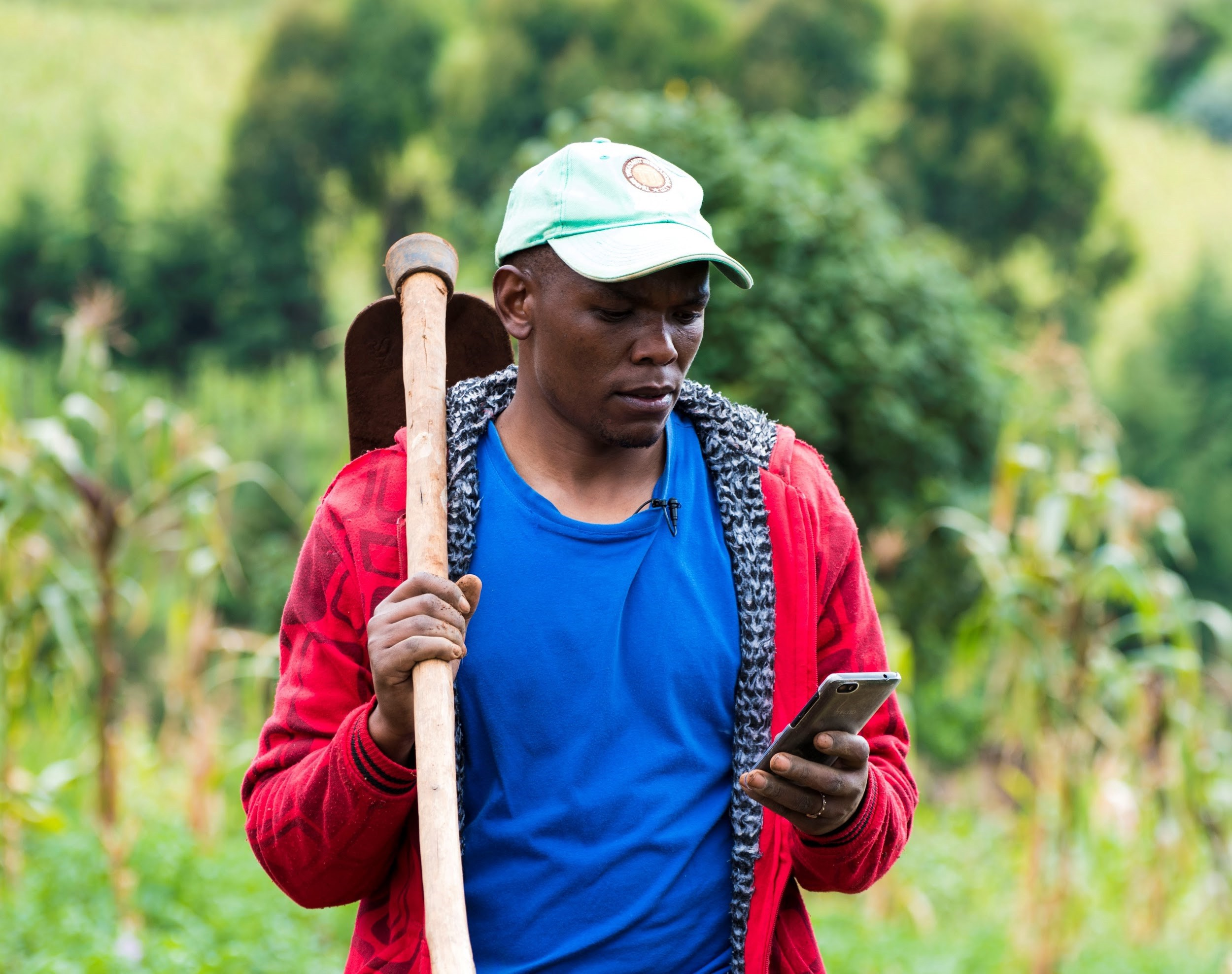 A small holder farmer uses the Agri-Wallet to help move produce and plan for the future.