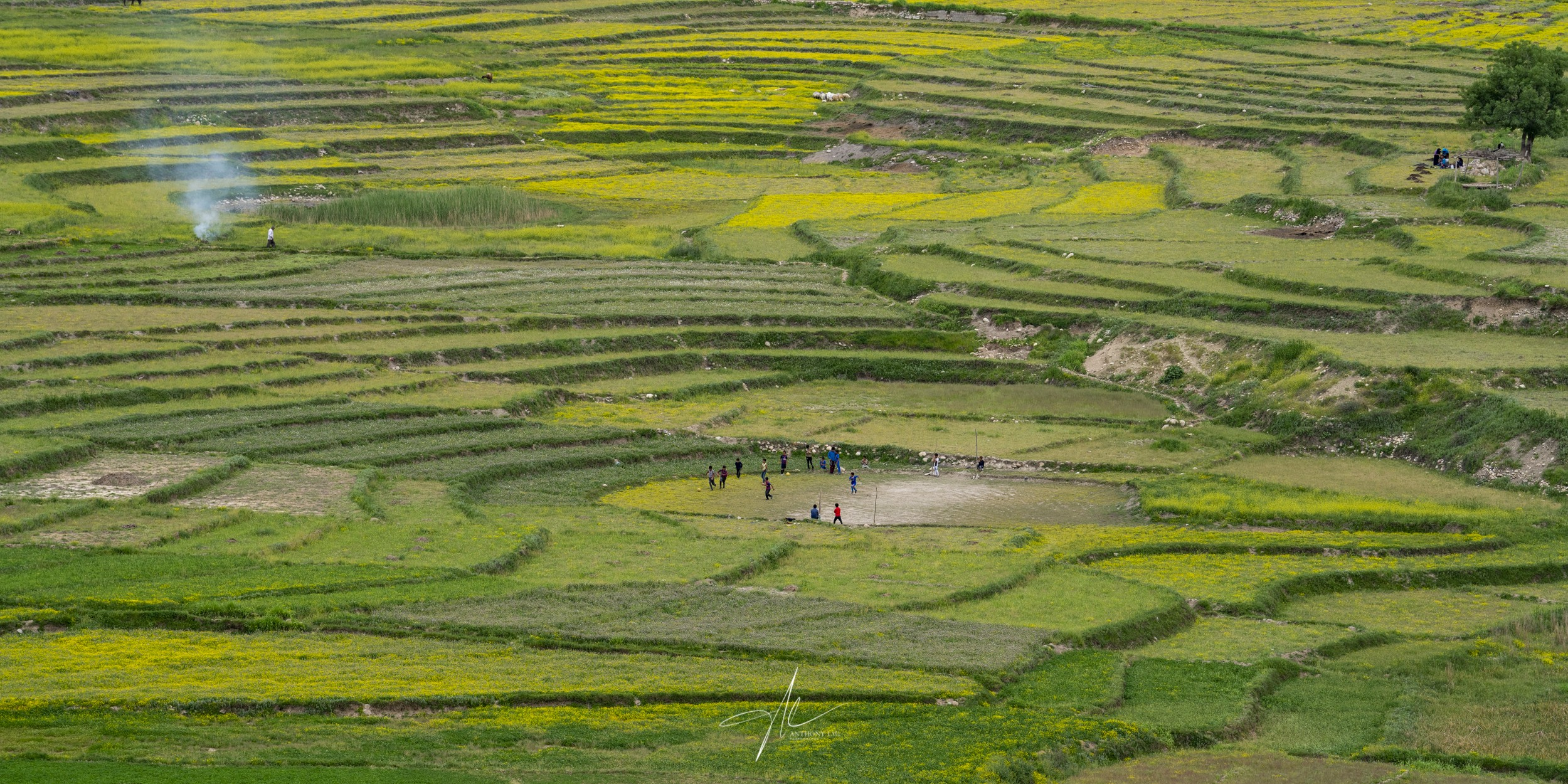 A group of local kids were playing a game of soccer between in the middle of the fields.
