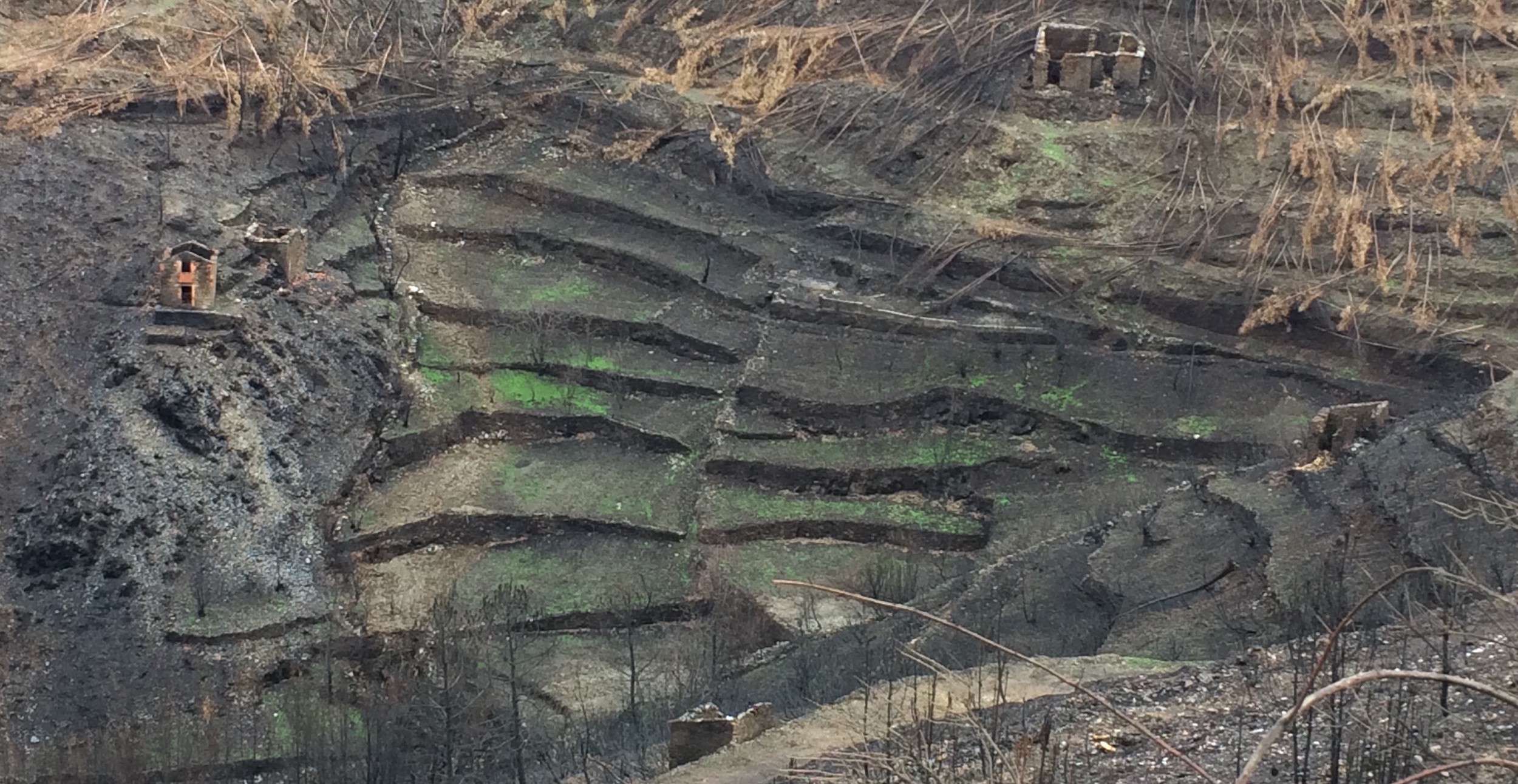 Catastrophic ecosystem degradation featuring wildfire damage and soil erosion. Photo by author.
