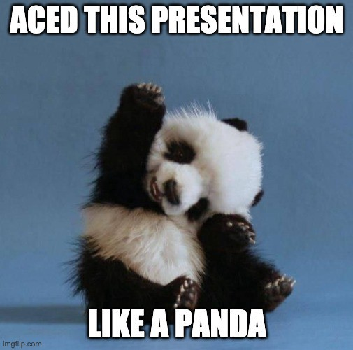 Image result for panda projections