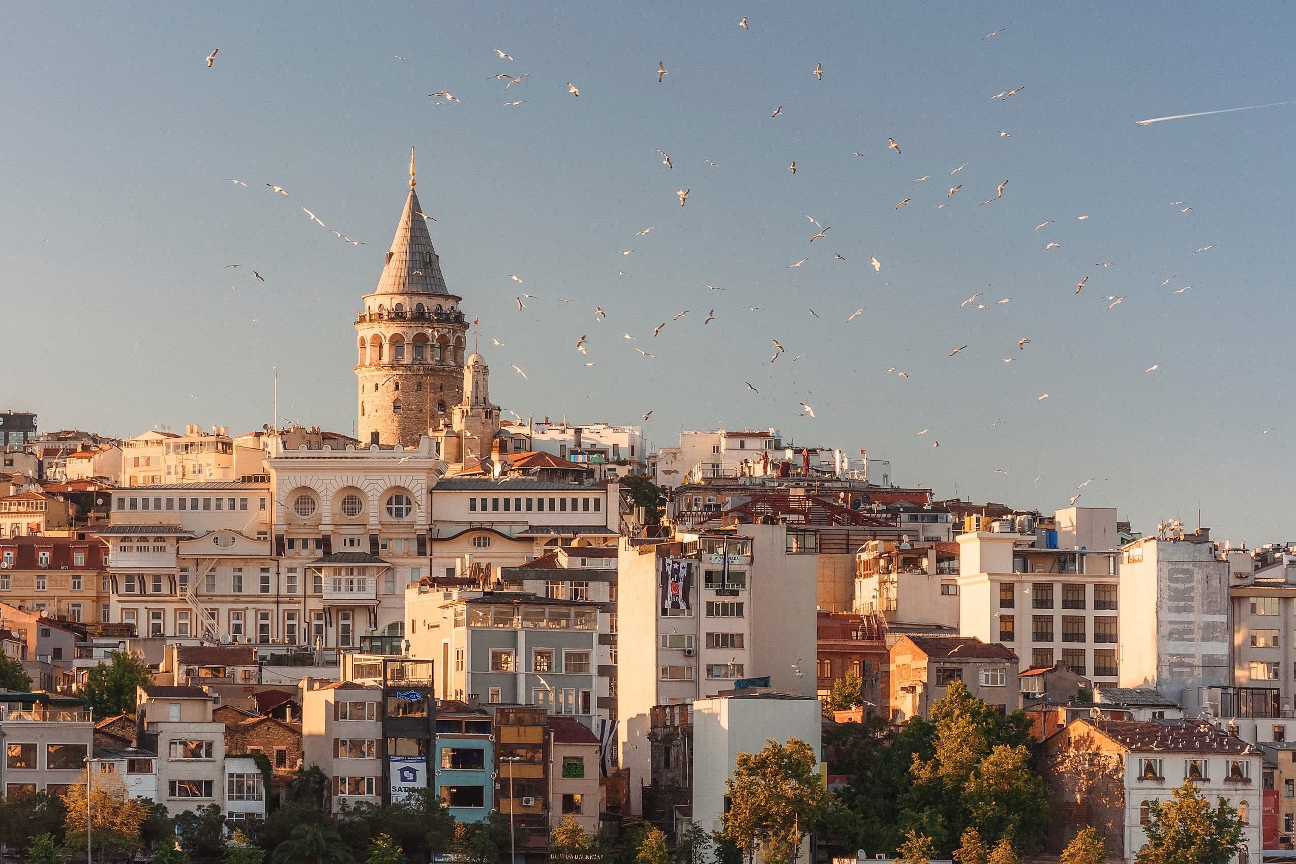 View of Galata Tower in Istanbul in the late afternoon with birds flying overhead.
