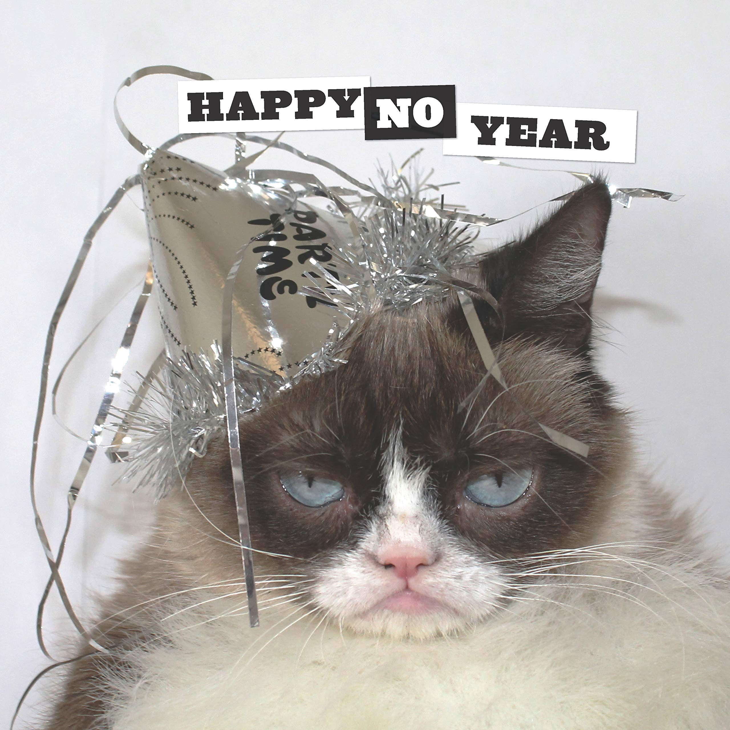 Grumpy Cat wishing folks a Happy No Year.