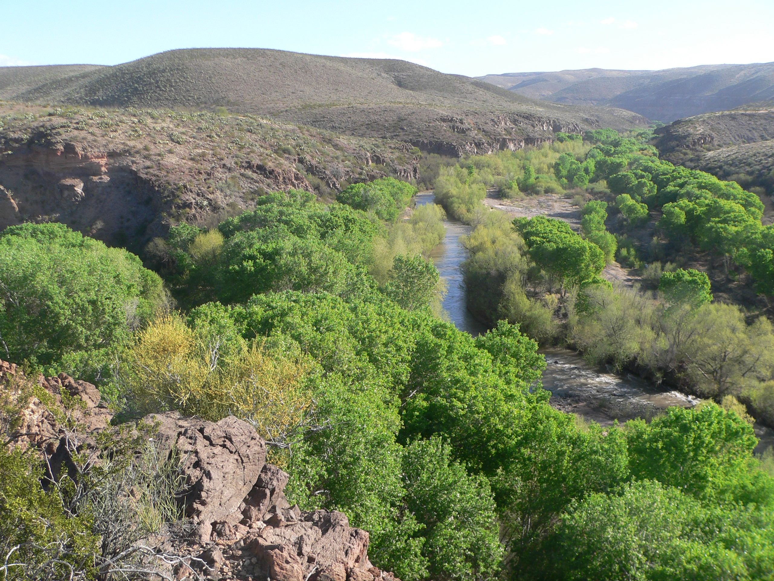 Confluence of Bonita Creek and Gila River in Gila Box Riparian National Conservation Area, in Graham County, Arizona; seen from the vicinity of the Kearny campsite monument. The Gila flows toward the camera, center and left of center; Bonita Creek flows left to right, through the canyon whose far wall is visible behind trees at the right edge of the photo.