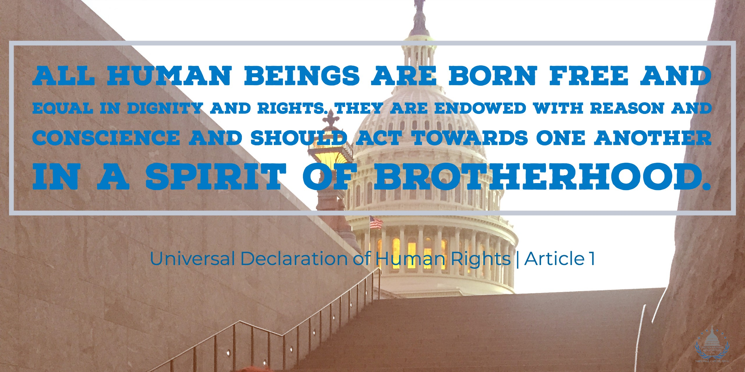 born free and equal in dignity and rights